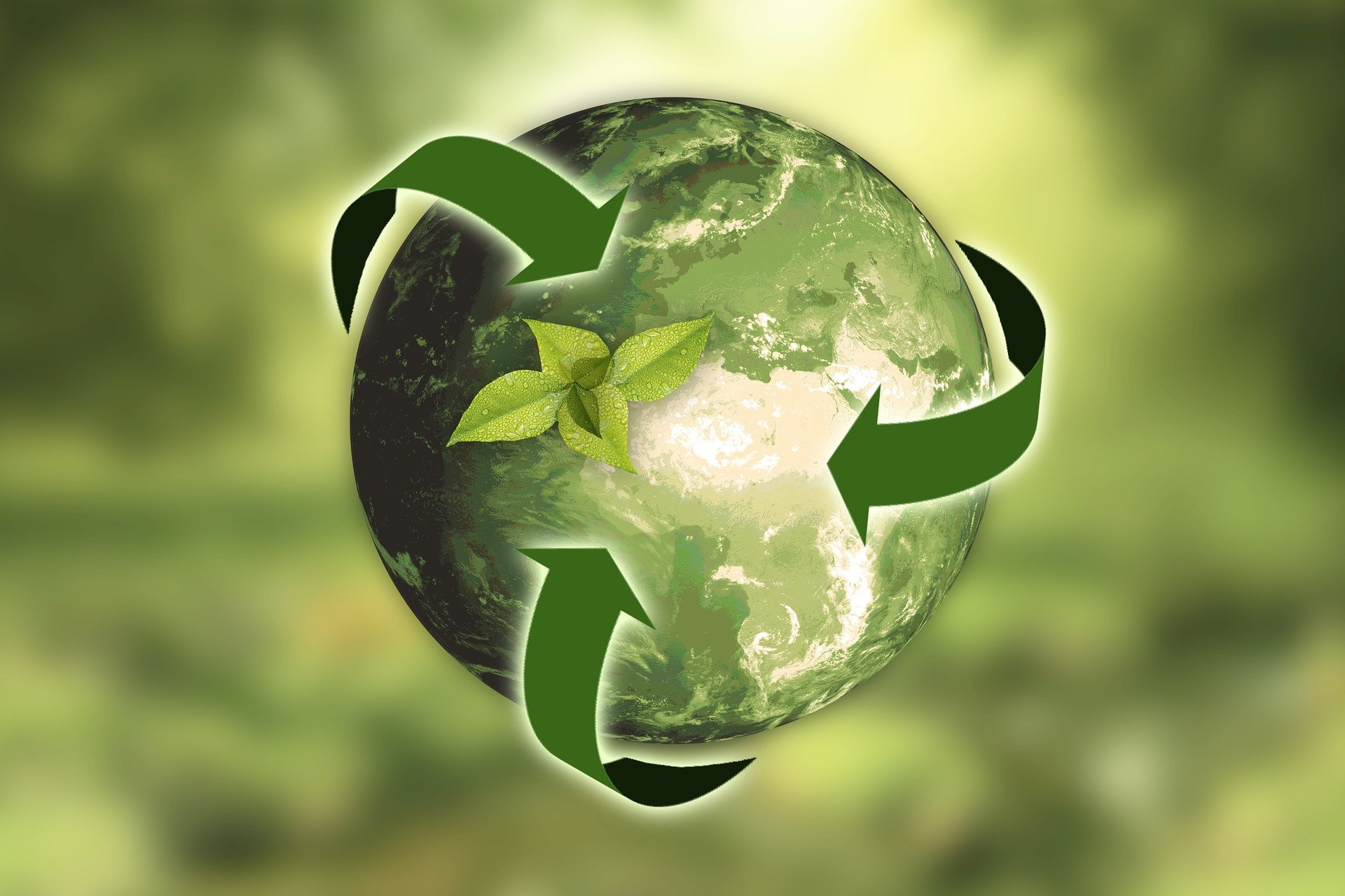 Defining and measuring sustainability