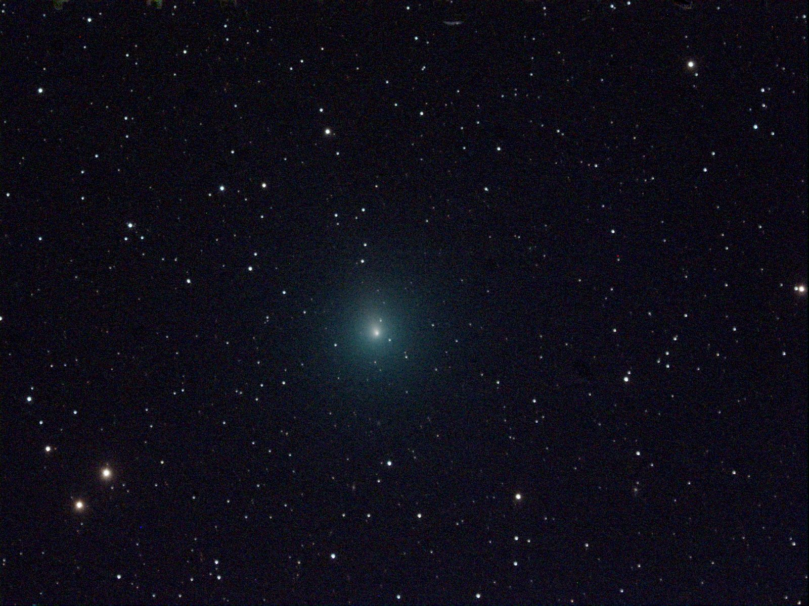 Christmas Comet.We Have A Christmas Comet How To Spot Interplanetary Comet