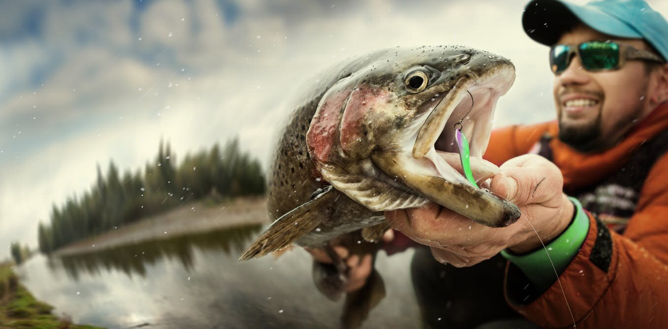 How anglers are changing the catchability of fish