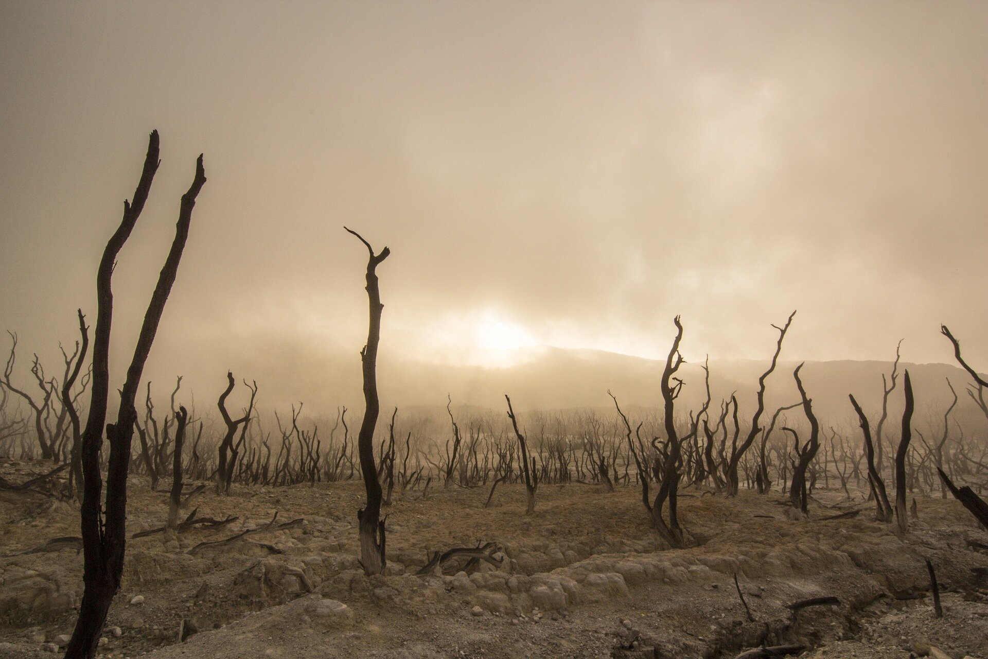 Understanding past climate change 'tipping points' can help us prepare for the future