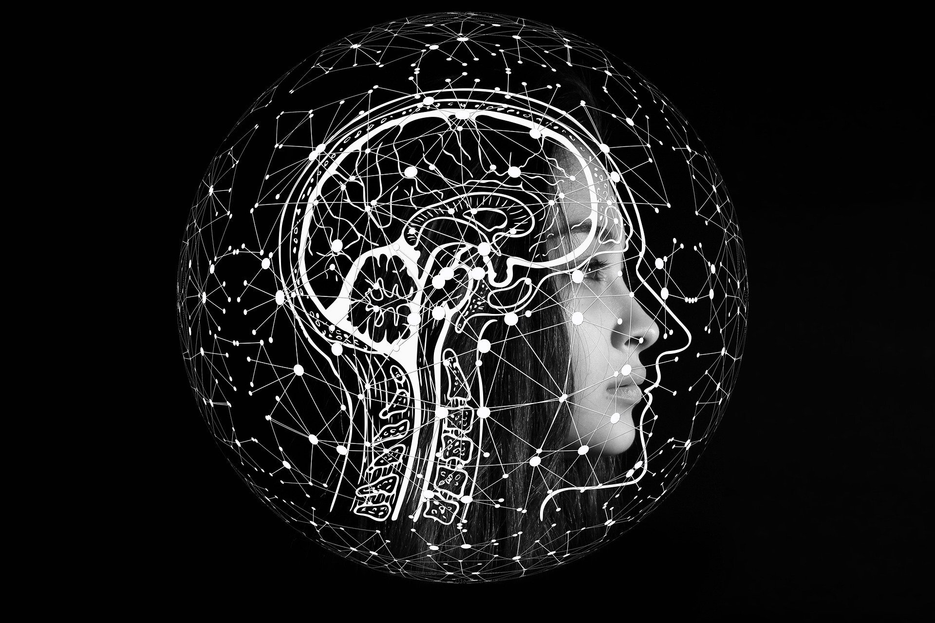 Artificial intelligence sheds light on how the brain processes language