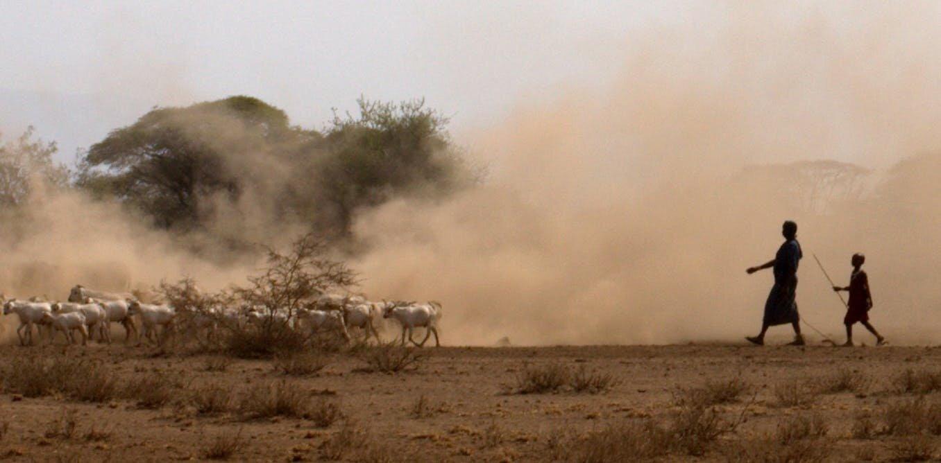 Ancient DNA is revealing the origins of livestock herding in Africa
