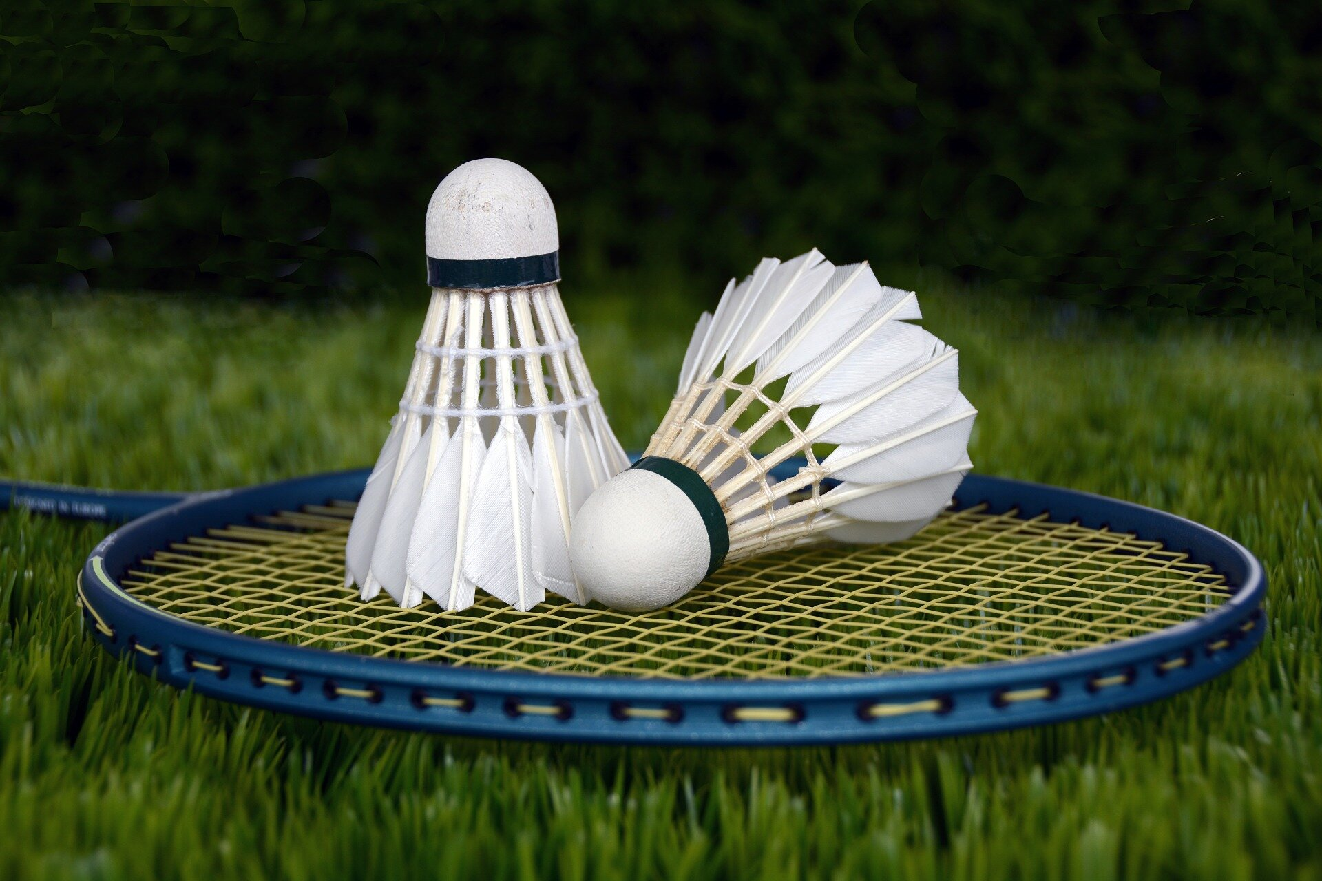 Doubles badminton players may be at highest risk of serious eye injury during play