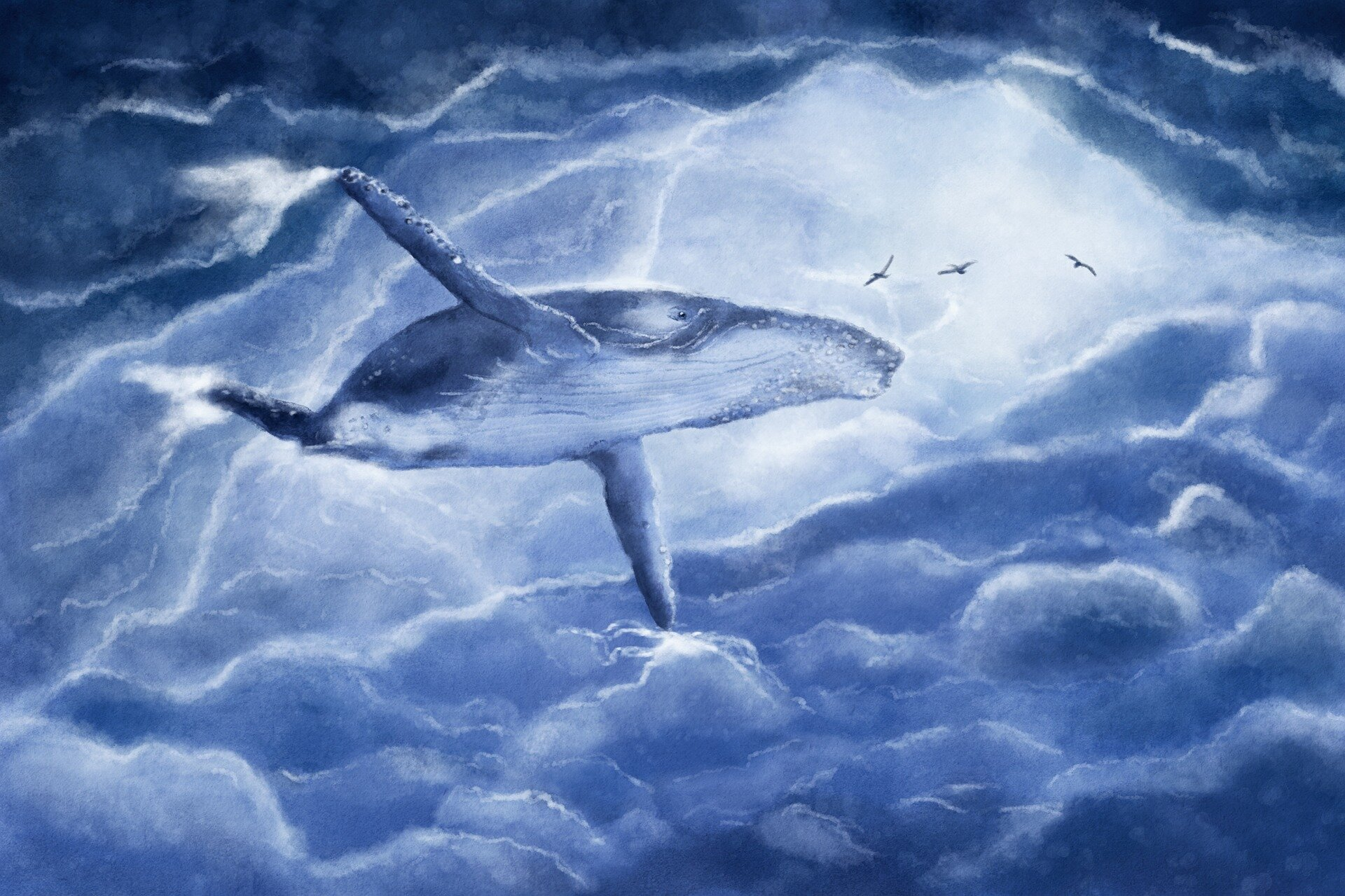 Study shows a whale of a difference between songs of birds and humpbacks