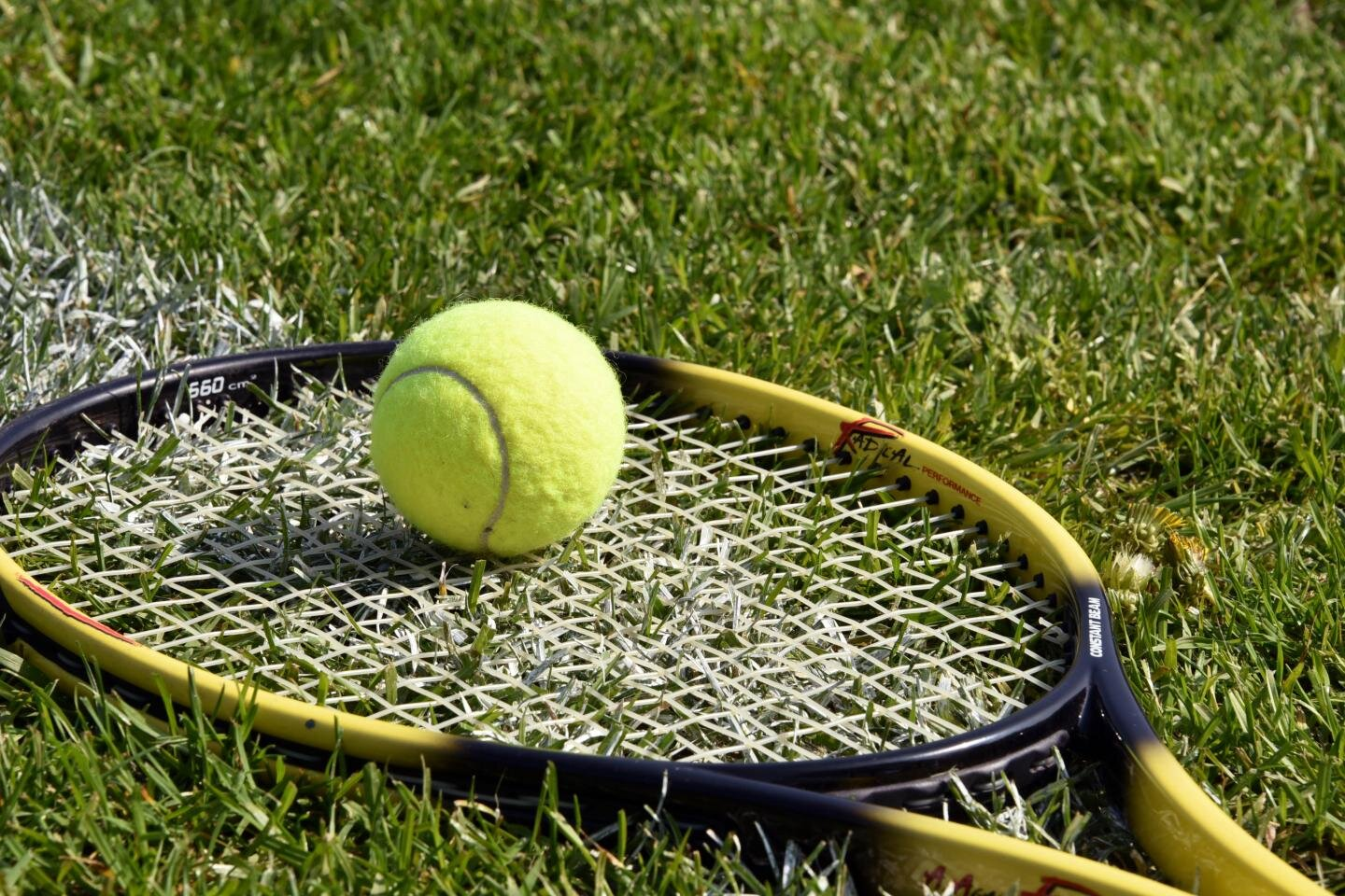 How Grunting Influences Perception In Tennis