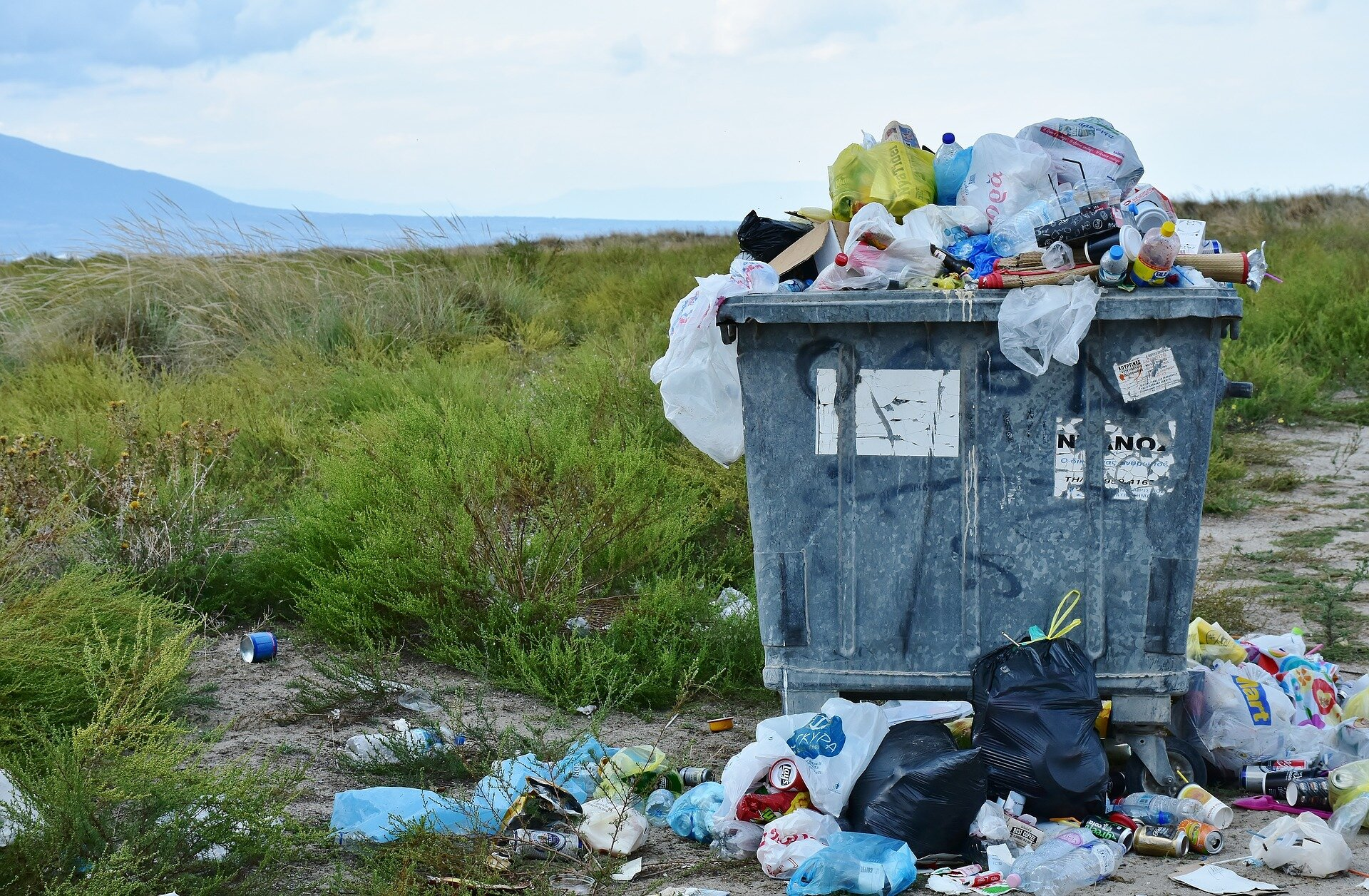 A new method for simultaneous processing of different types of waste
