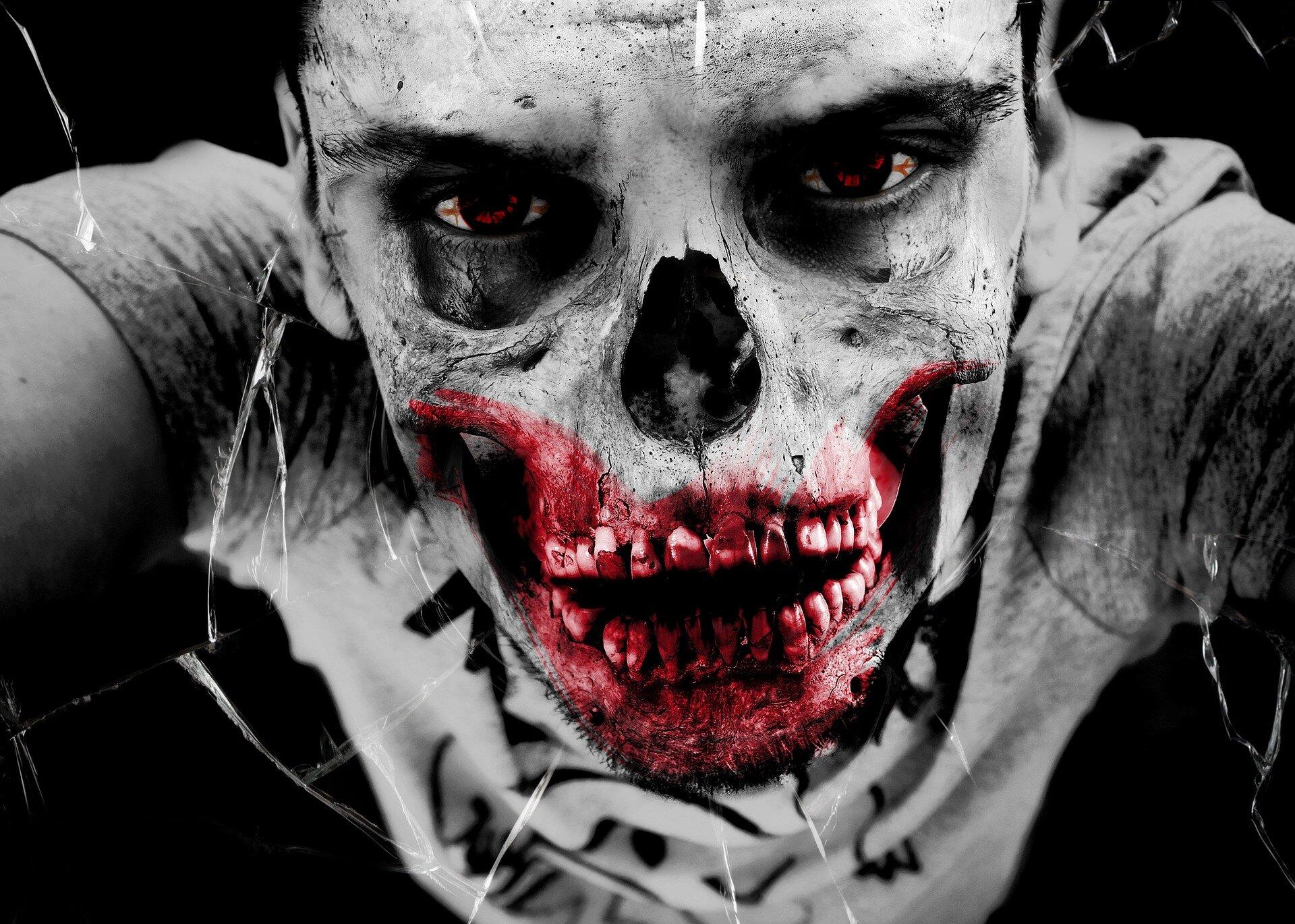 Surviving A Zombie Apocalypse Using Mathematics