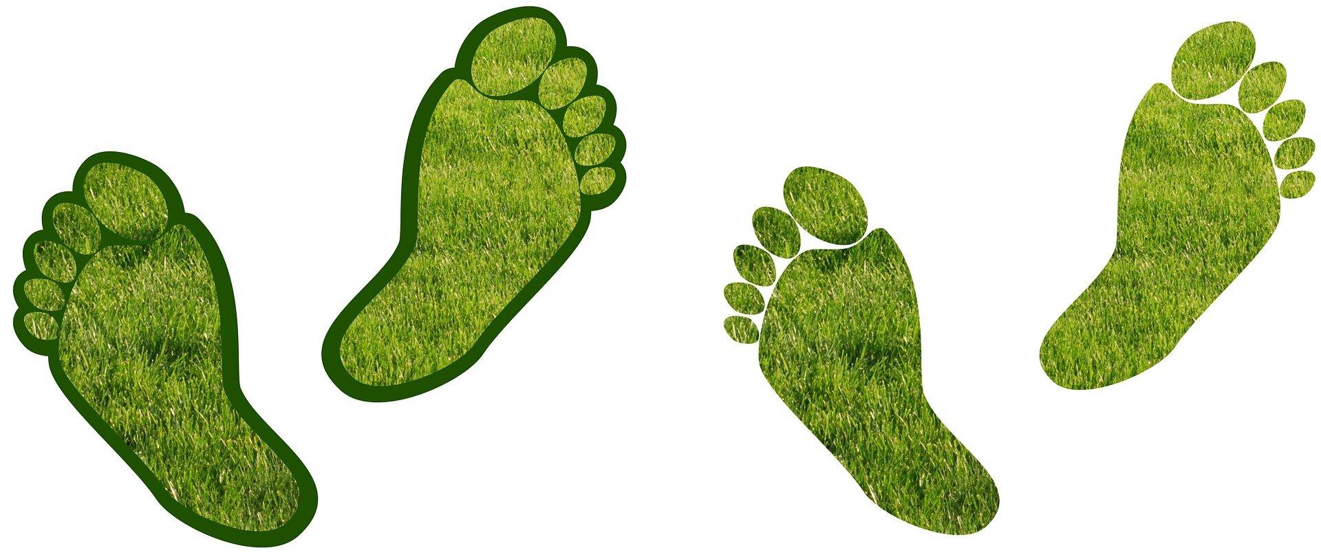 Economists Find Carbon Footprint Grows with Parenthood