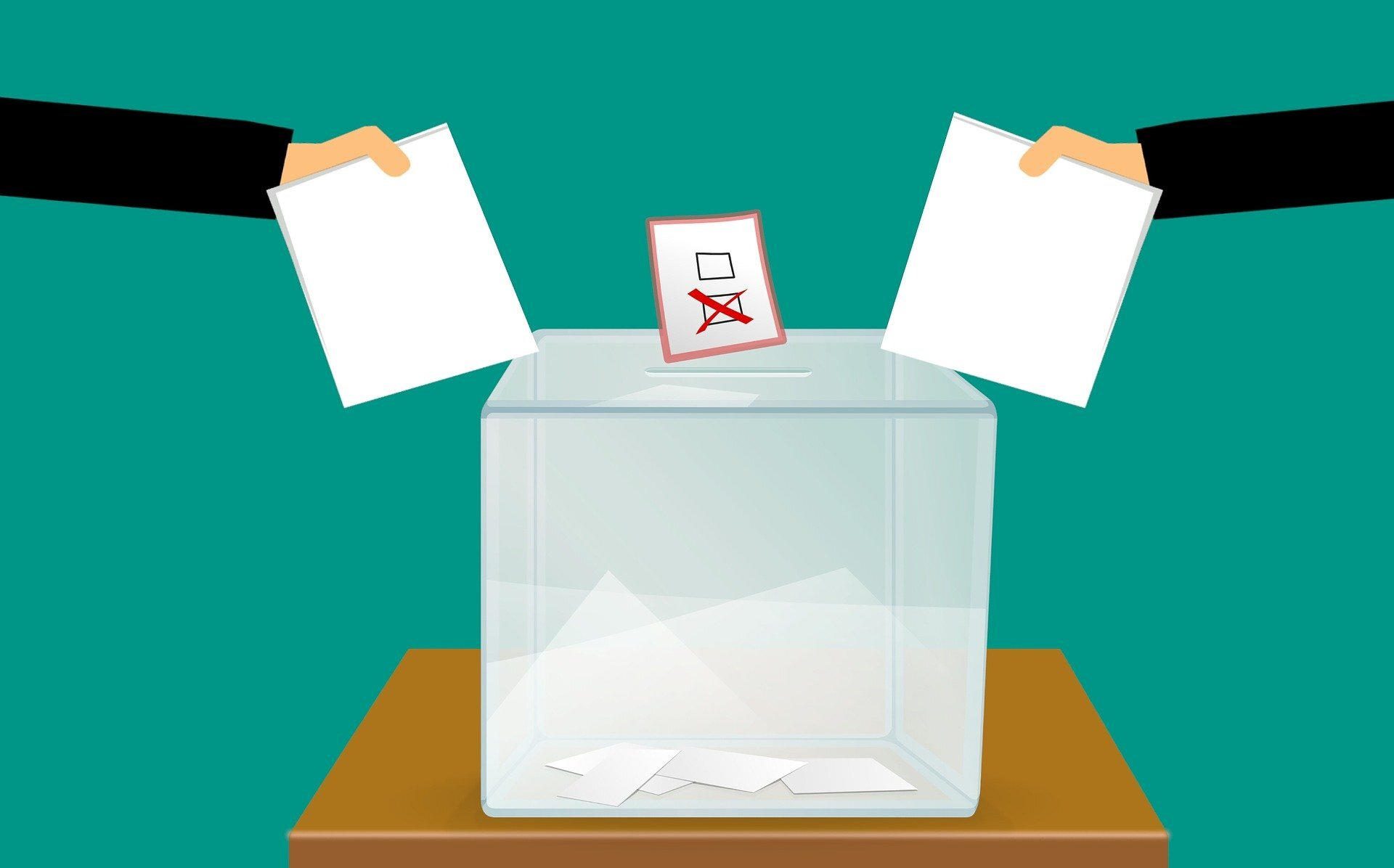 Who does the electoral college favor?