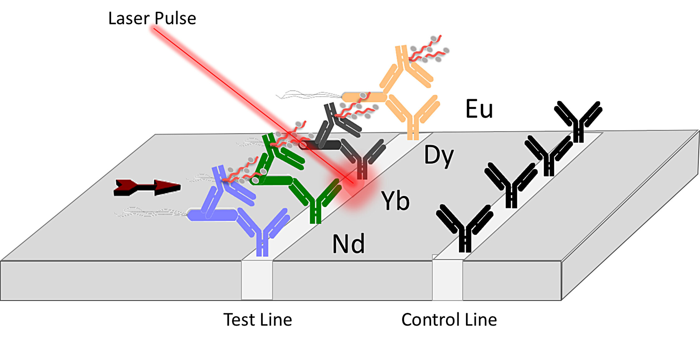 New technology for pathogen detection driven by lasers