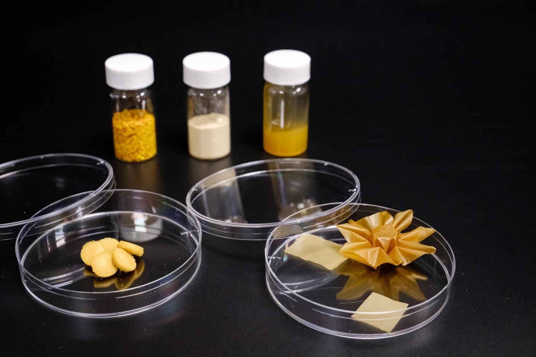 Scientists transform ultra-tough pollen into flexible material