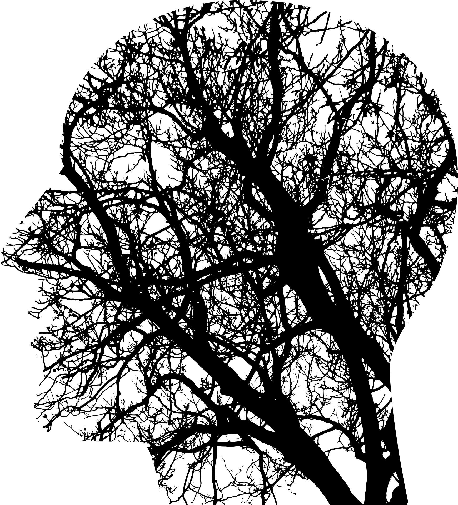Sensory perception is not superficial brain work