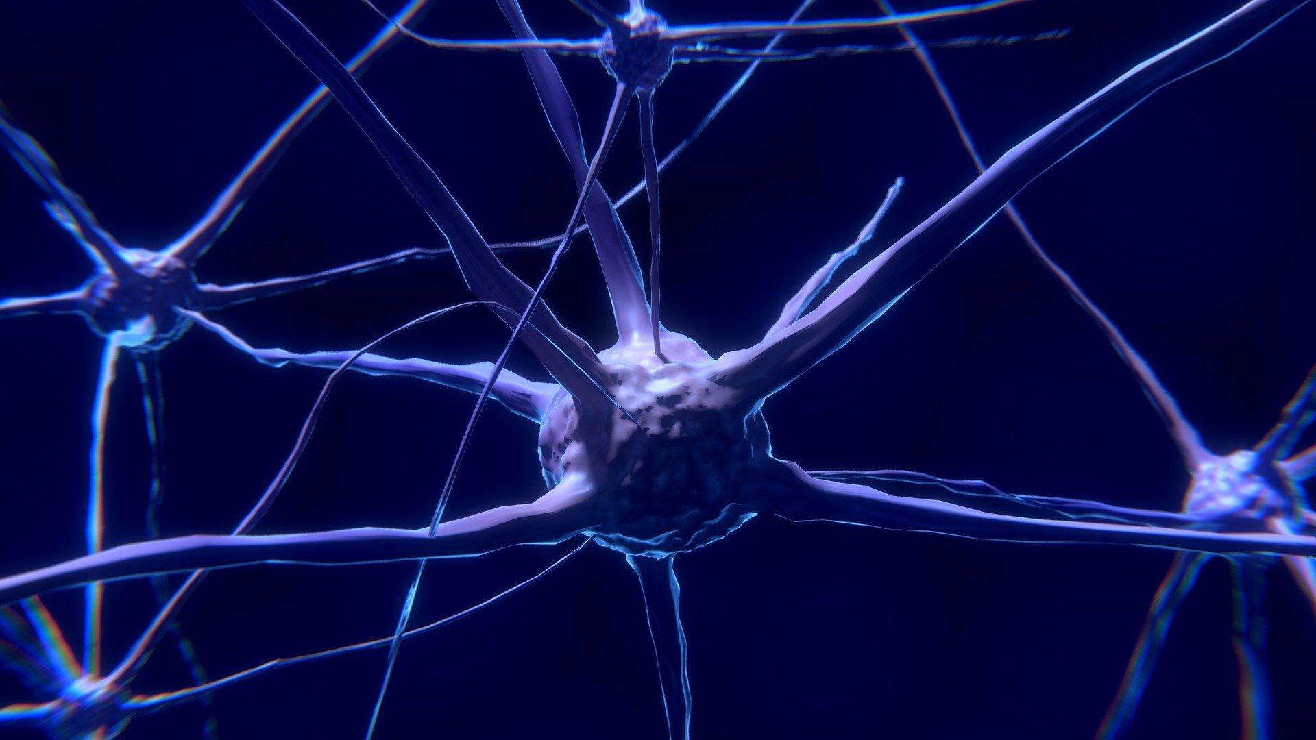 Brain noise comprises unfamiliar signature of dream sleep - Clinical Xpress thumbnail
