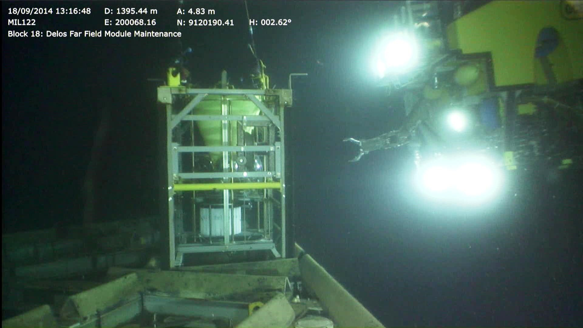 photo of Scientists document seasonal migrations of fish across the deep-sea floor for the first time image