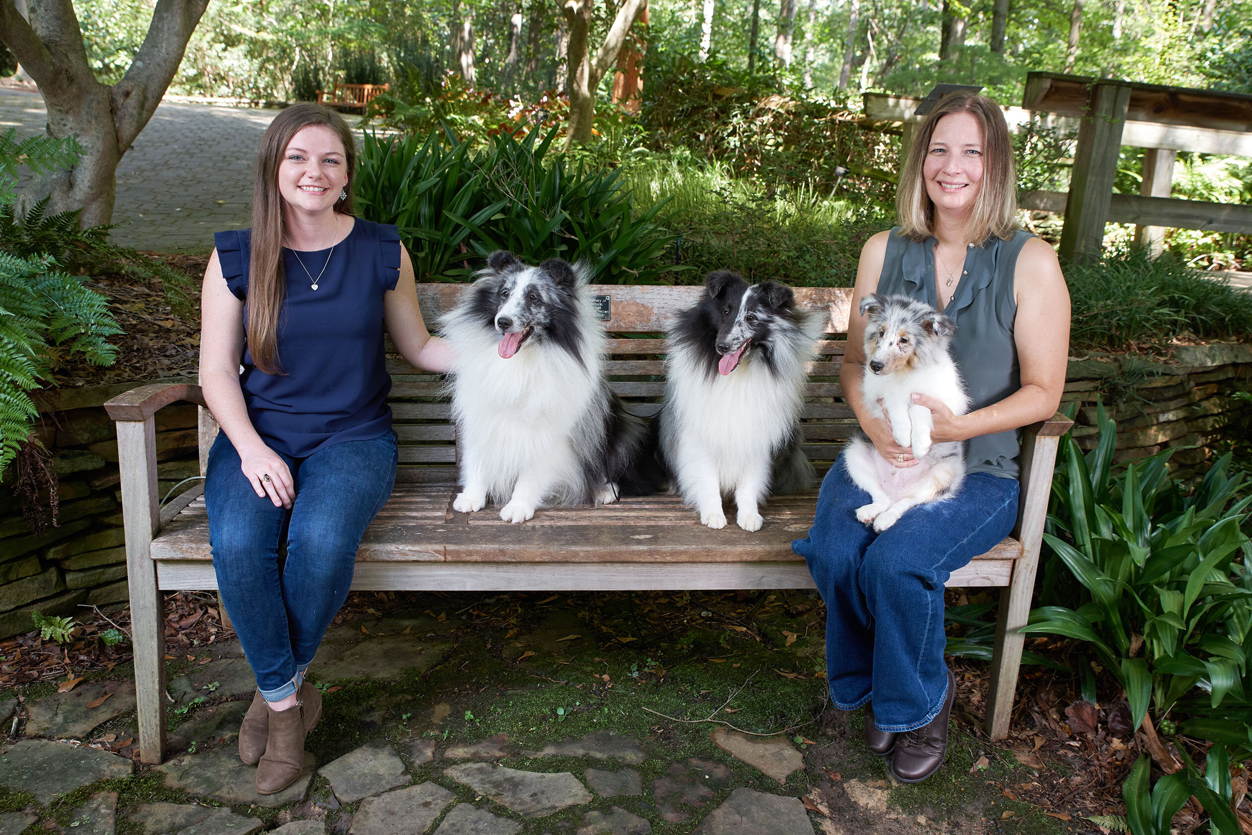New research identifies genetic factors contributing to small body size in dogs
