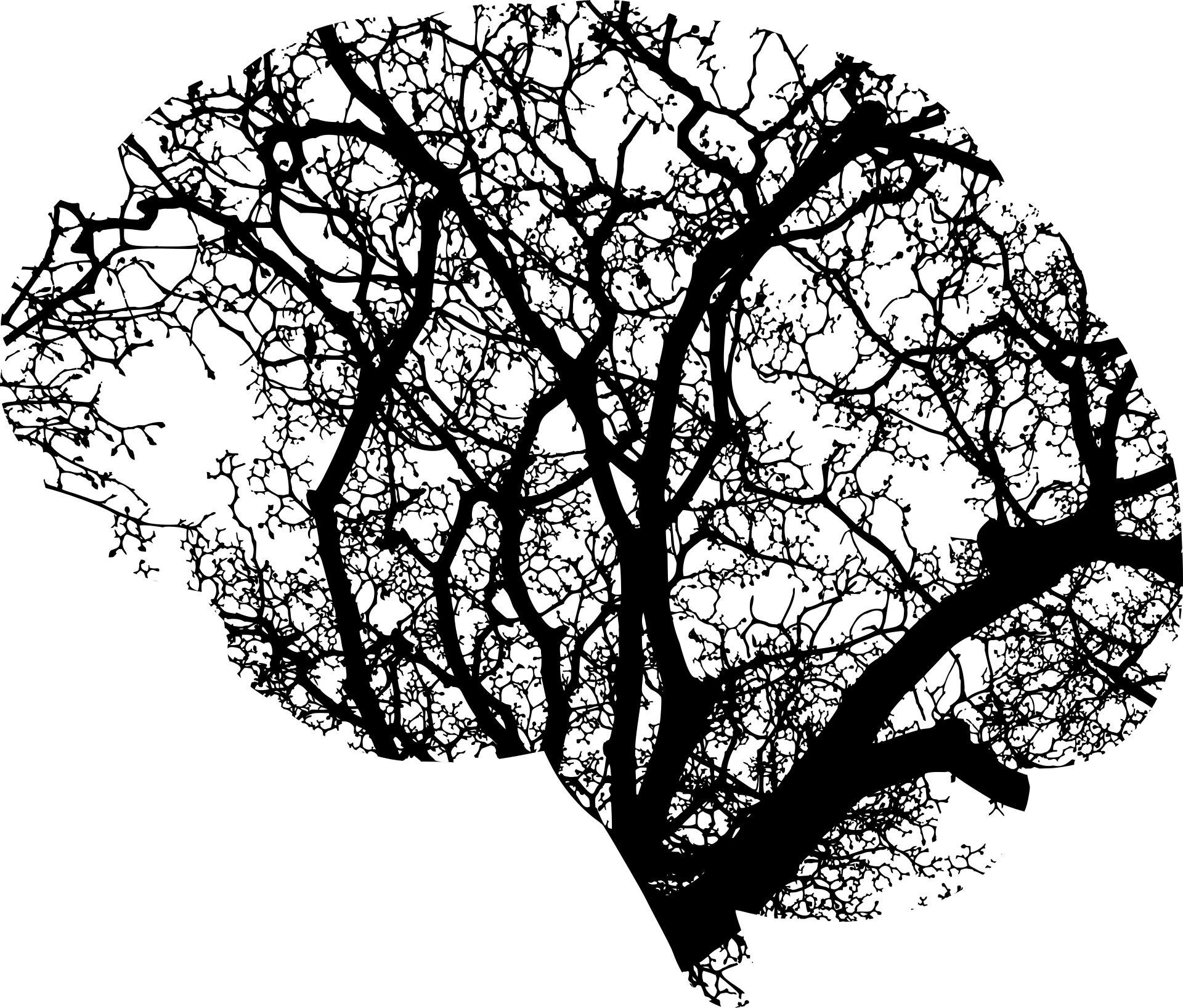 AI-Analyzed Blood Test Can Predict the Progression of Neurodegenerative Disease