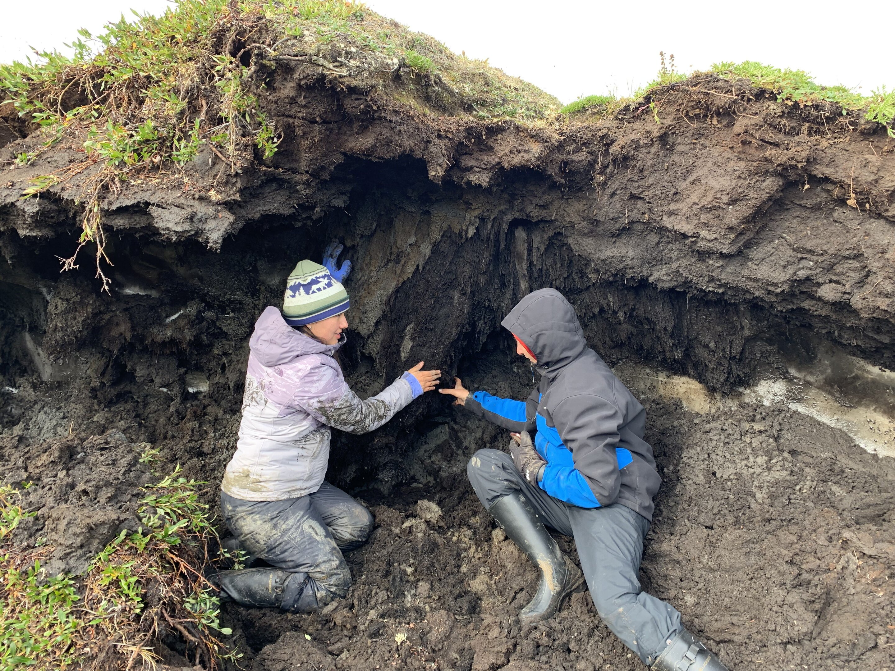 Coastal permafrost more susceptible to climate change than previously thought - Phys.org