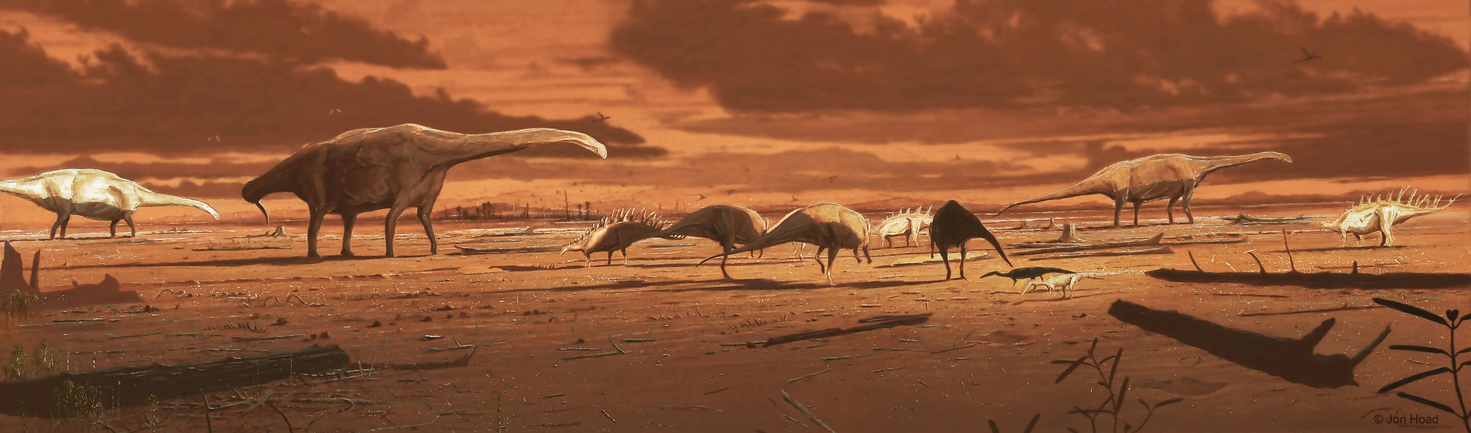 Dinosaur stomping ground in Scotland reveals thriving middle Jurassic ecosystem thumbnail