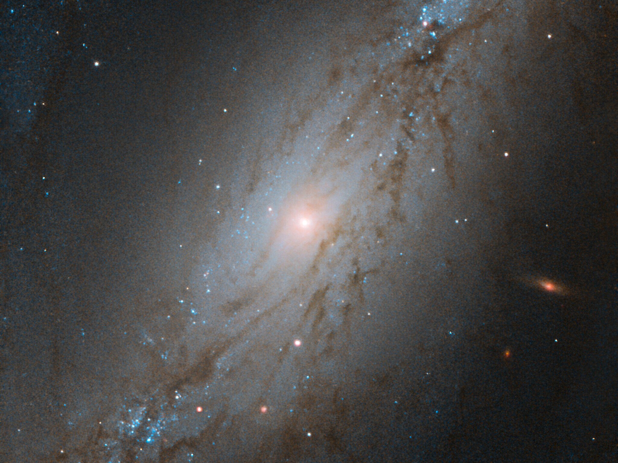 Image: Hubble sees sculpted galaxy