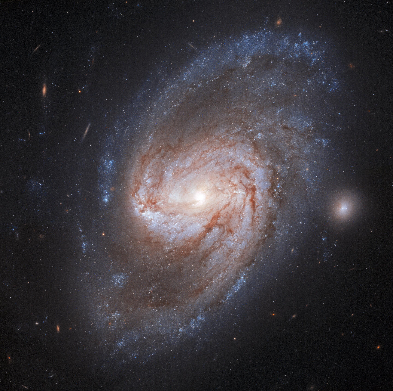 Image: Hubble views a galaxy burning bright