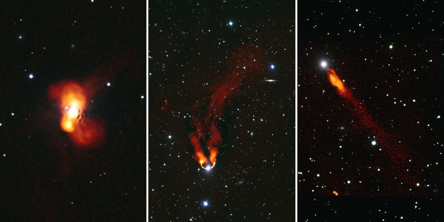Galaxies in the Perseus Cluster