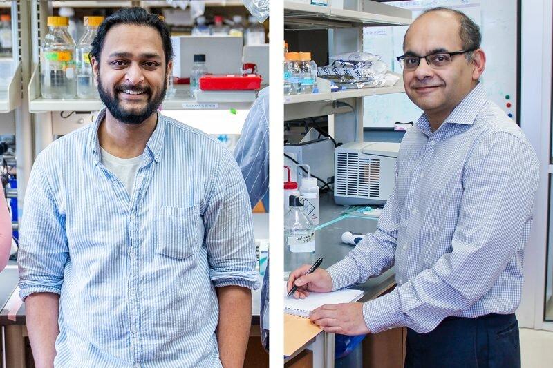 Molecular cause underlying rare genetic disorder revealed