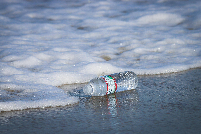 photo of Research shows how plastics threaten biodiversity of marine life image