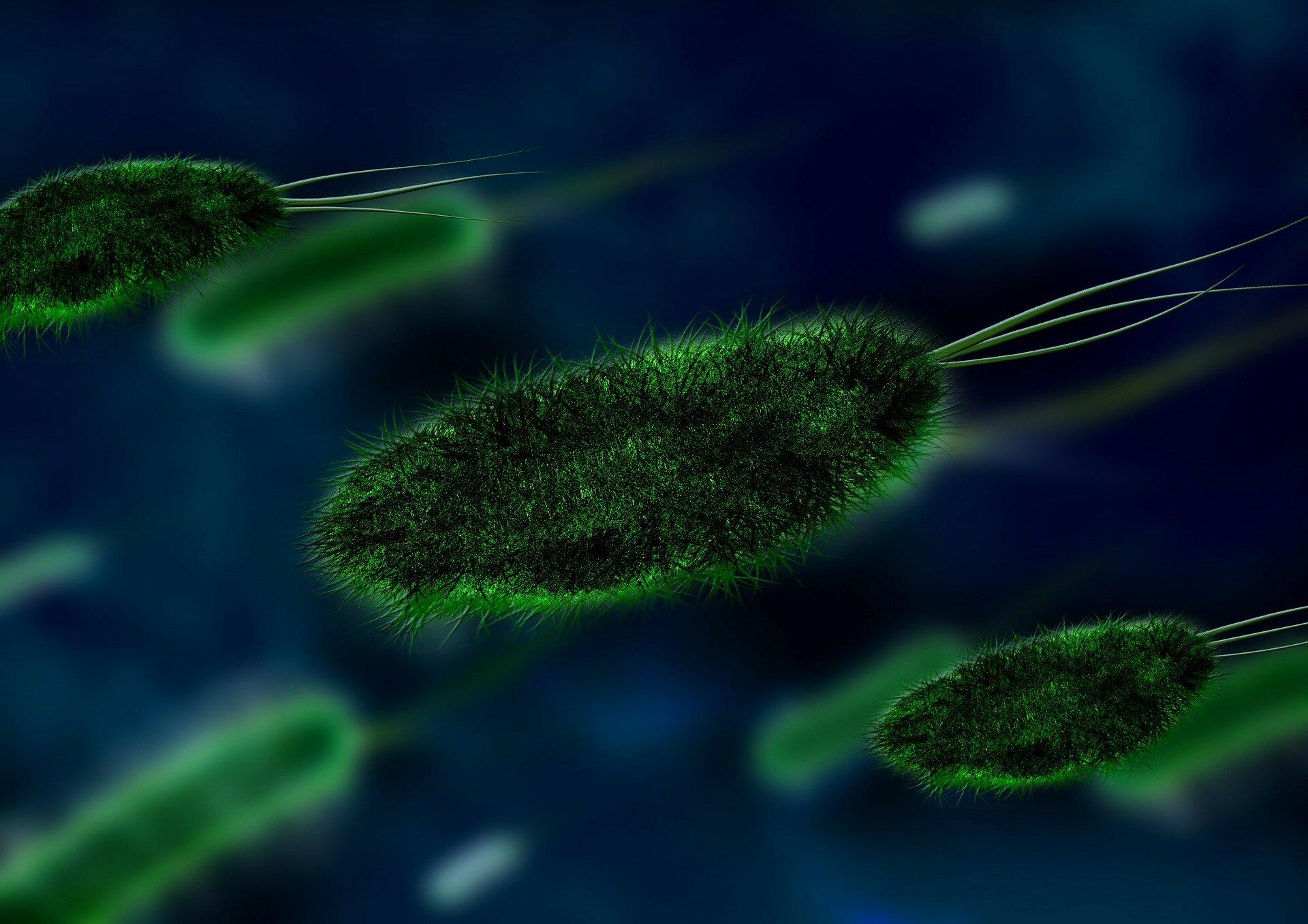 Novel antibiotic deceives bacteria through mimicry