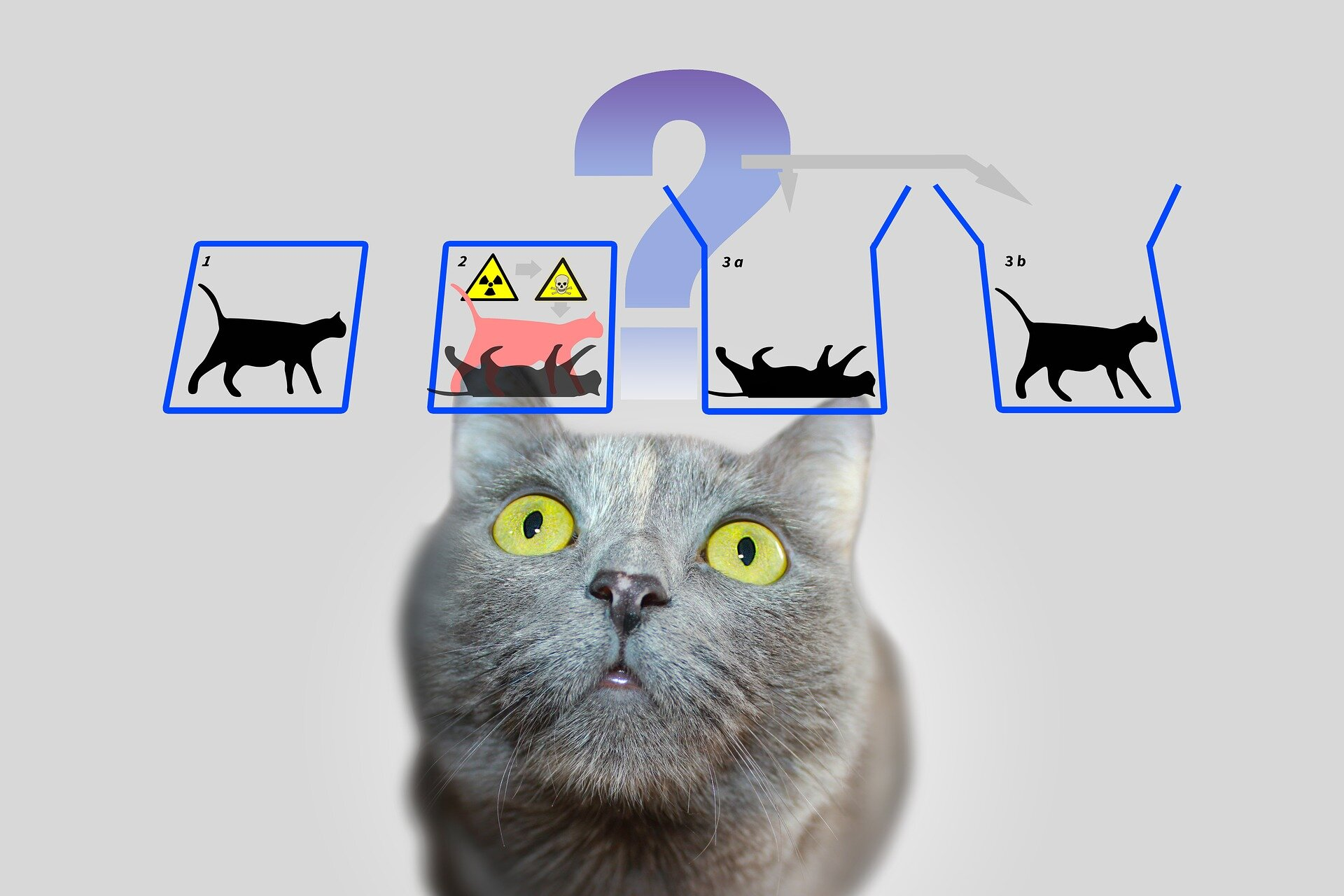 Deconstructing Schrödinger's cat