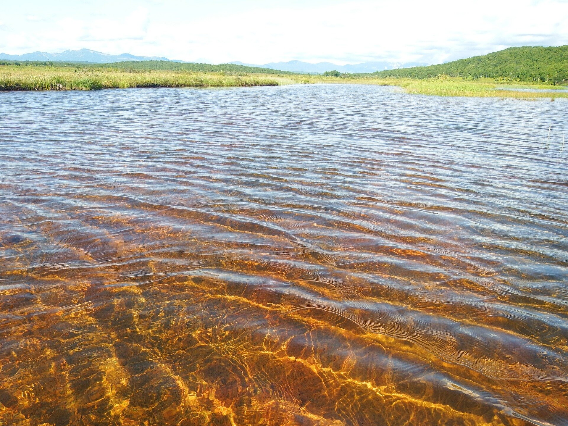 shallowwater.'