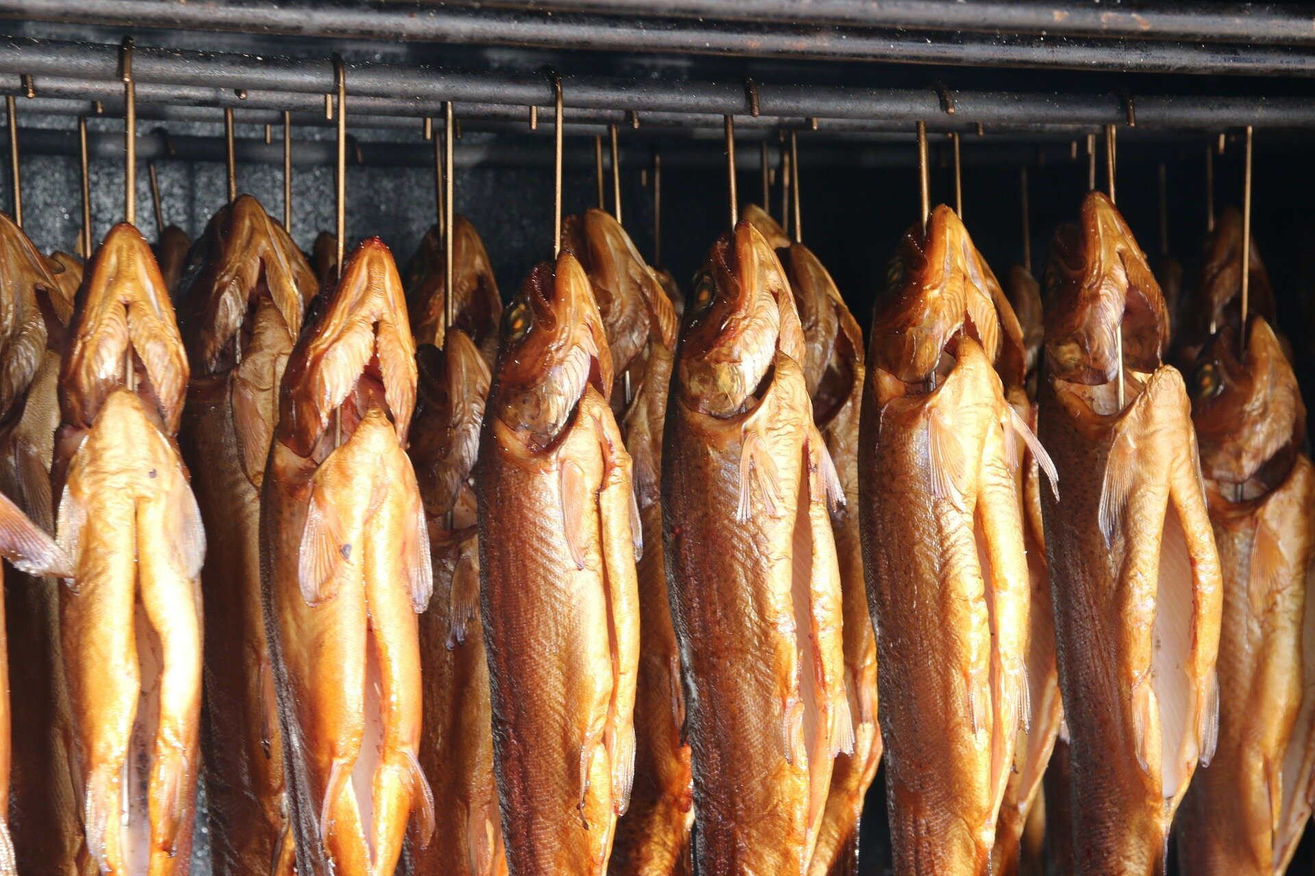 Invisible Threat: Listeria in Smoked Fish