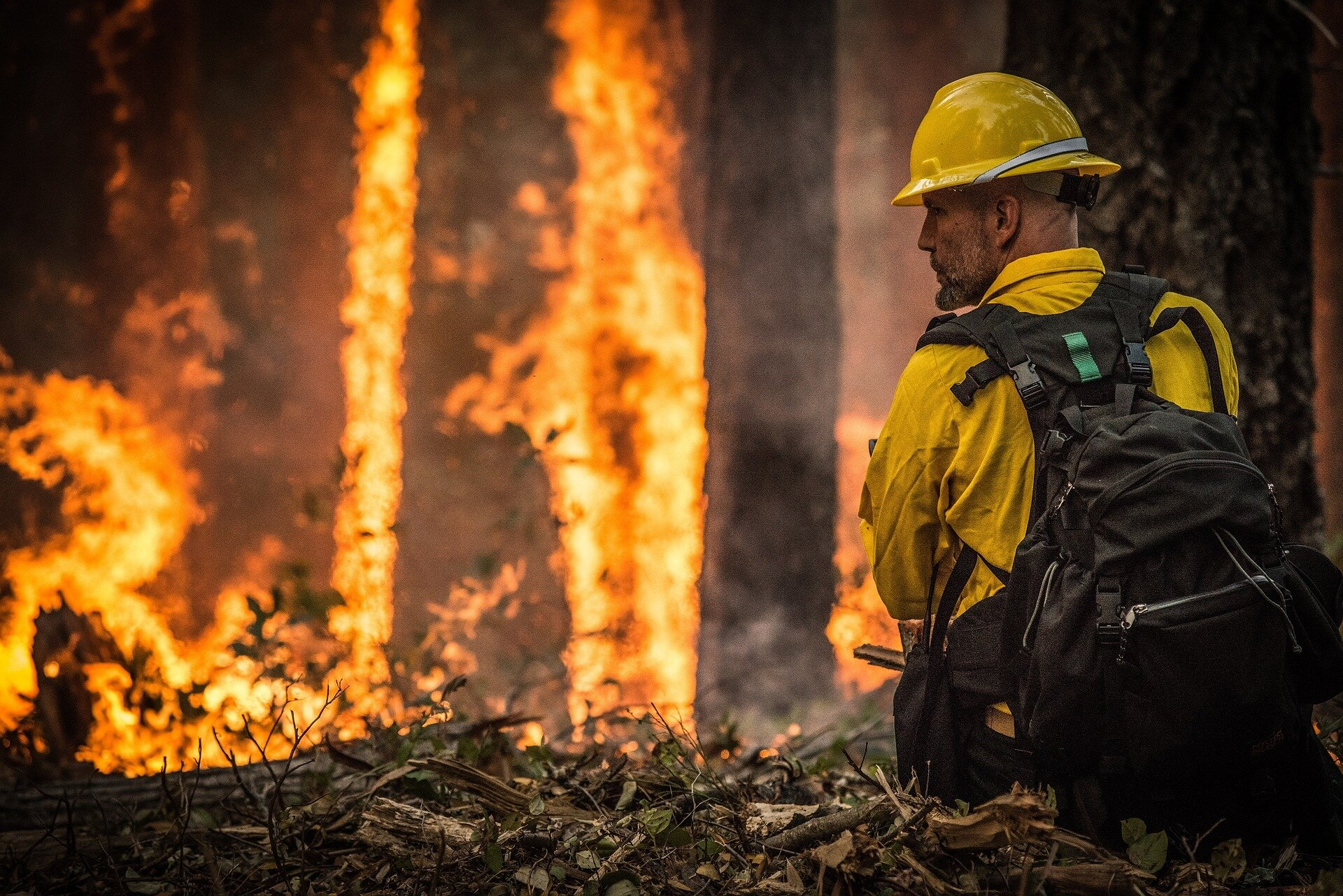 Wildfire on the rise since 1984 in Northern California's coastal ranges