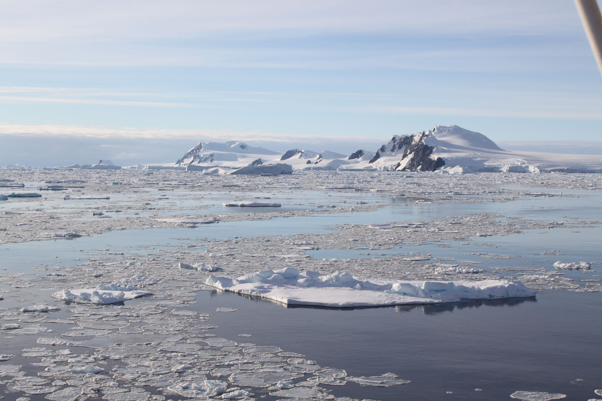 phys.org - Russ Bahorsky - To predict the future of polar ice, environmental scientists are looking to the past