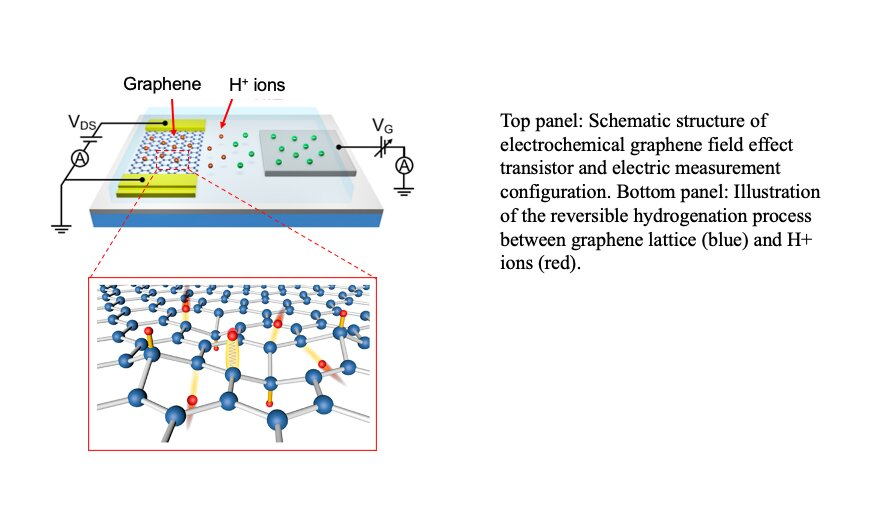 Researchers identify a strategy to achieve large transport gap modulation in graphene