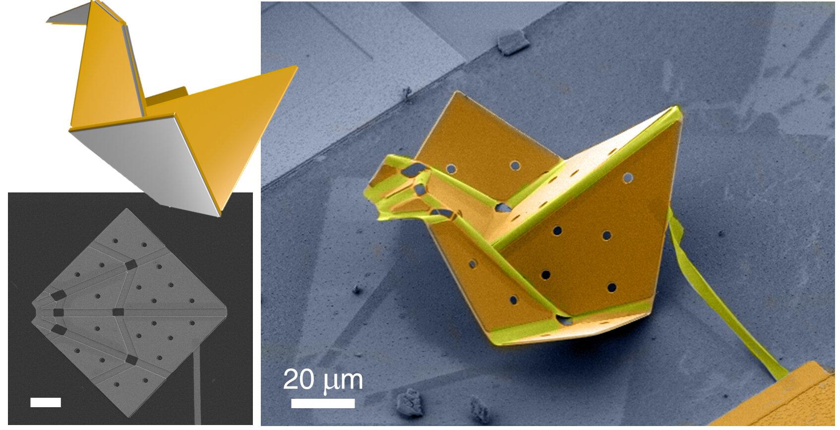 Nanotech scientists create world's smallest origami bird