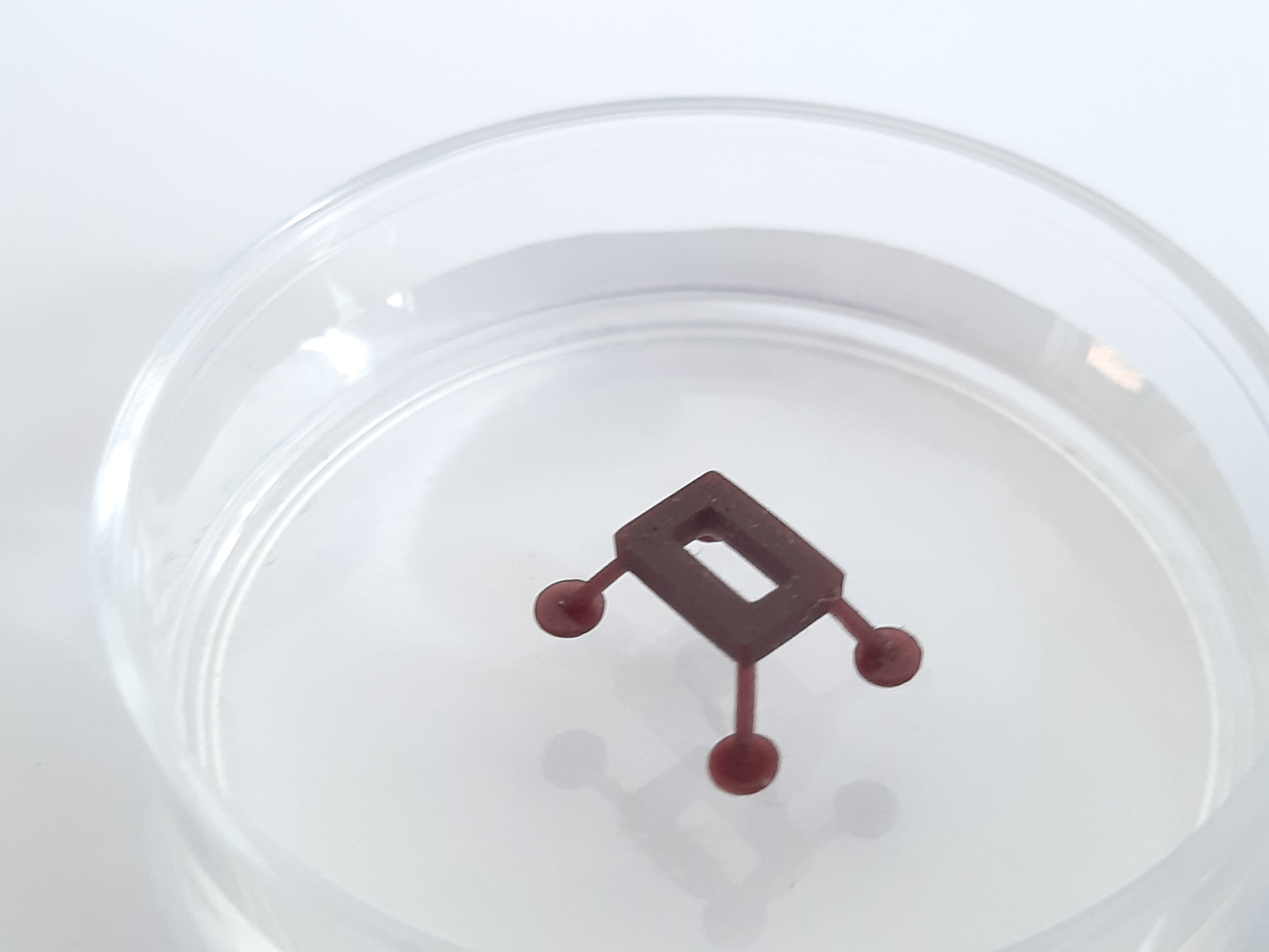 ThermoBots: Microrobots on the water