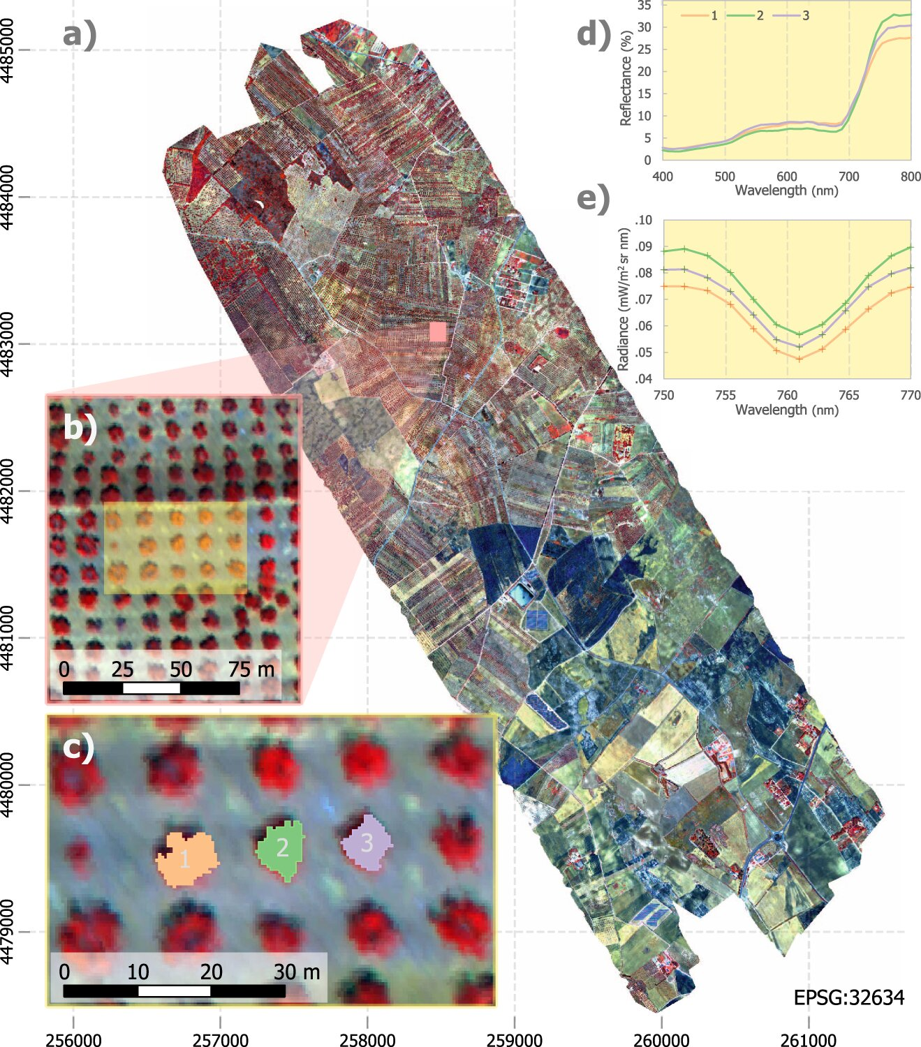 phys.org - Science X staff - Aerial scanning can help protect food crops against devastating disease