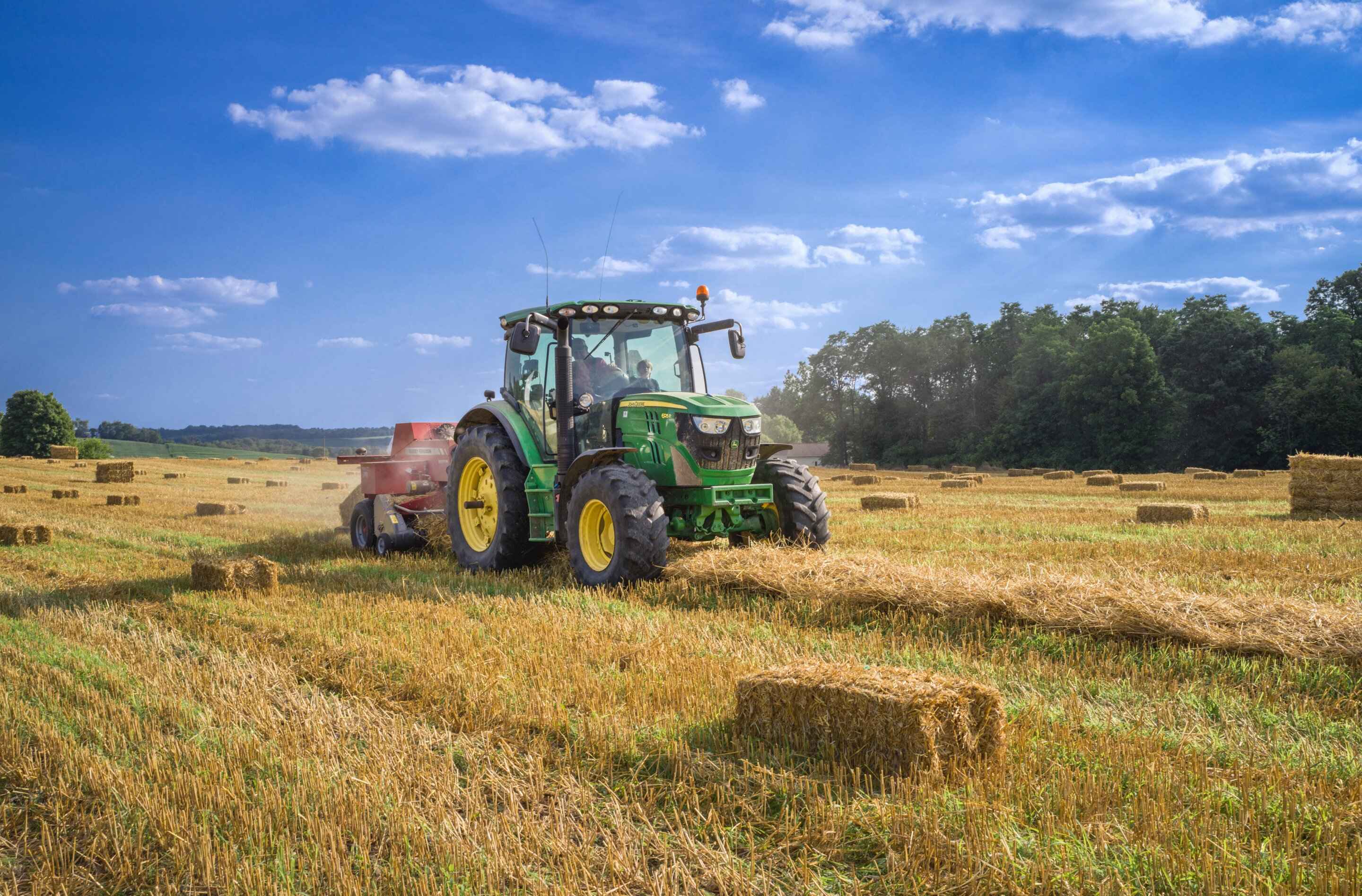 photo of Sustainable farming: There's no one solution image