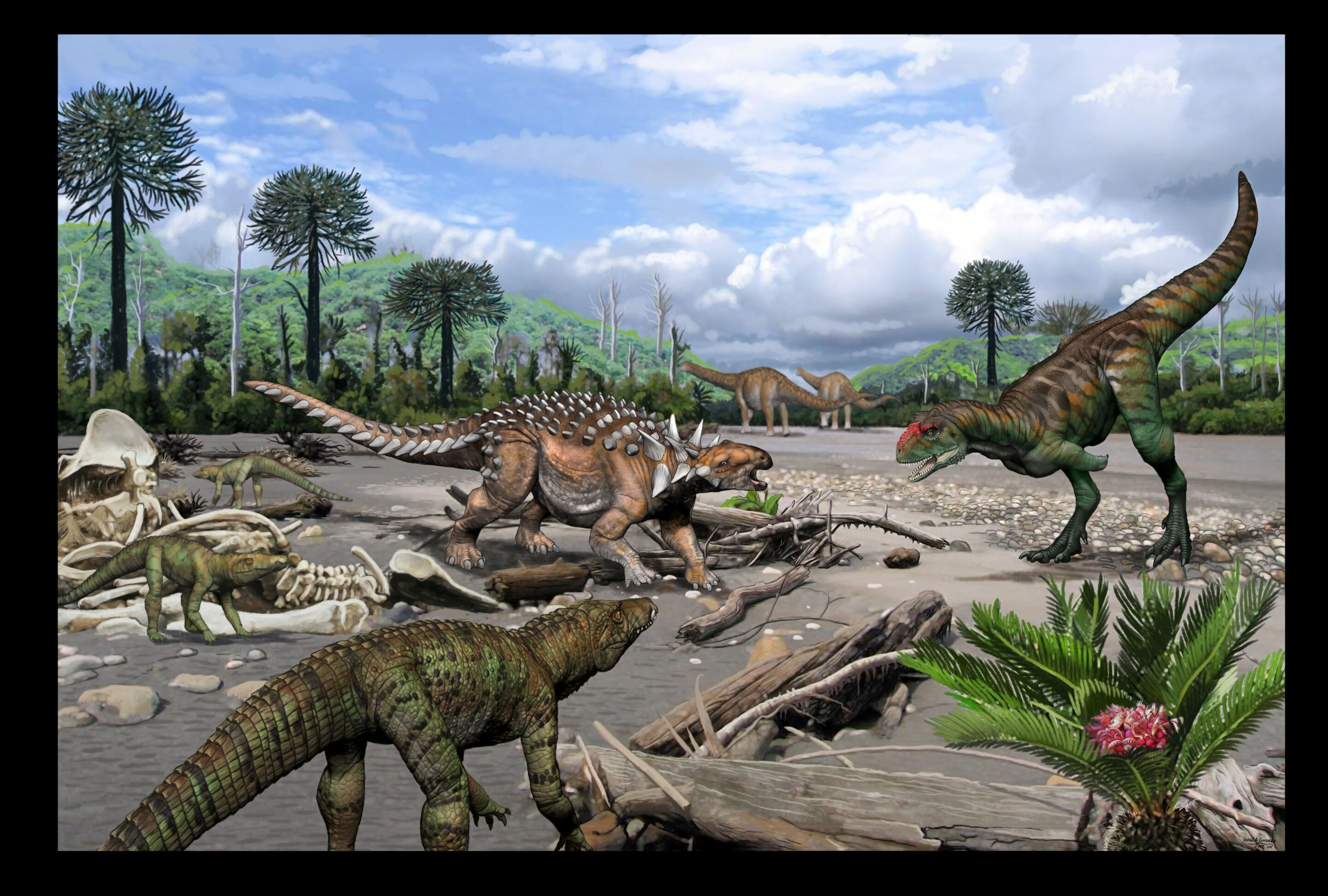 Ancient teeth reveal surprising diversity of Cretaceous reptiles at Argentina fossil site
