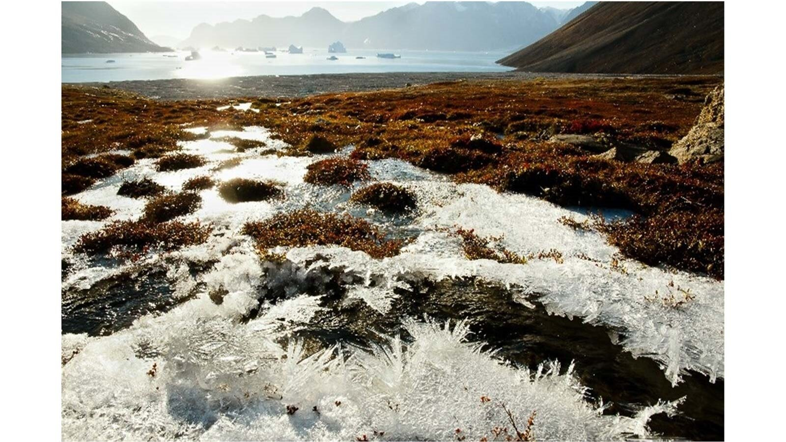 Team unravels mysteries of carbon release in permafrost soils