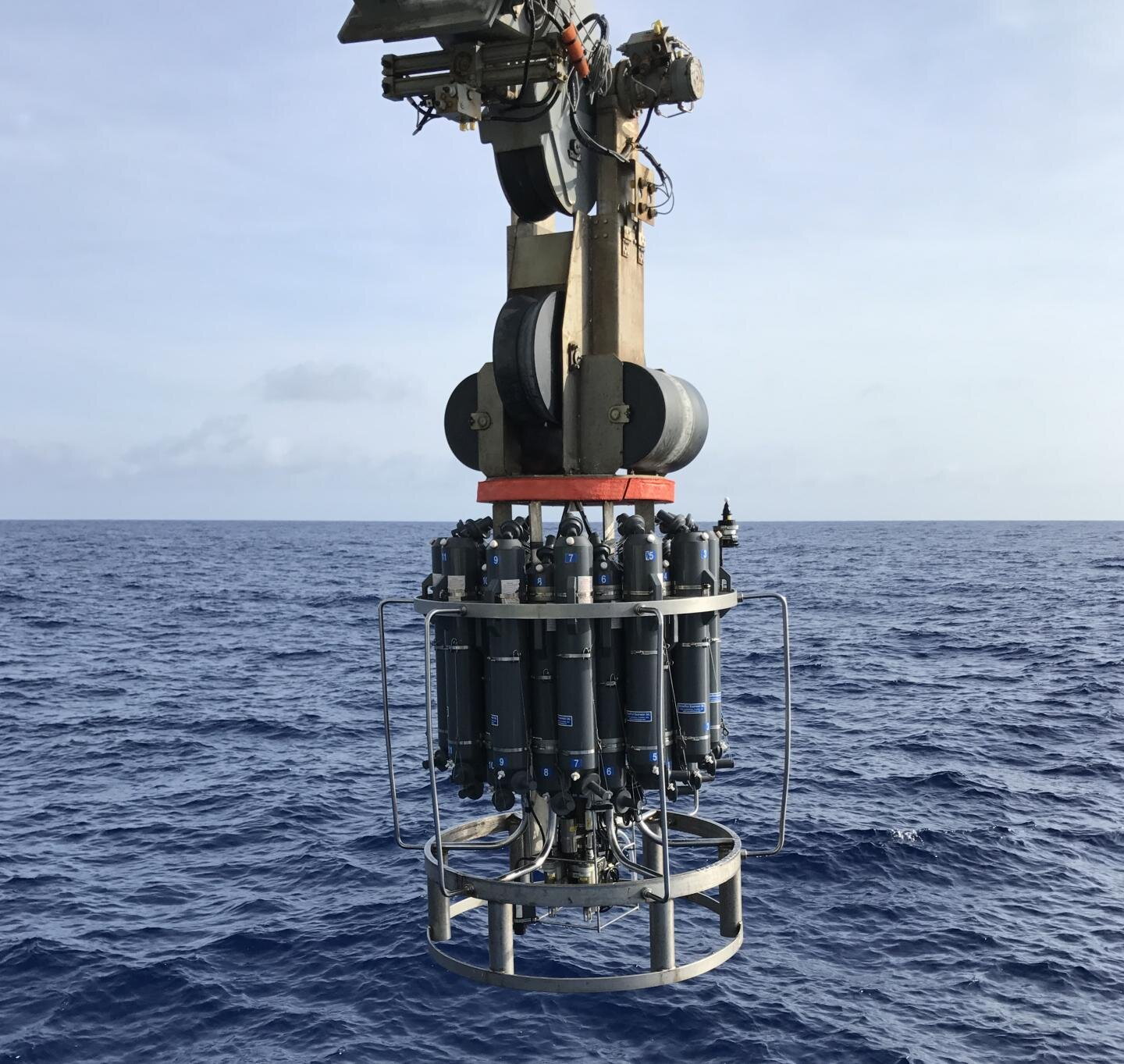 Researchers discover an immense hydrocarbon cycle in the world's ocean