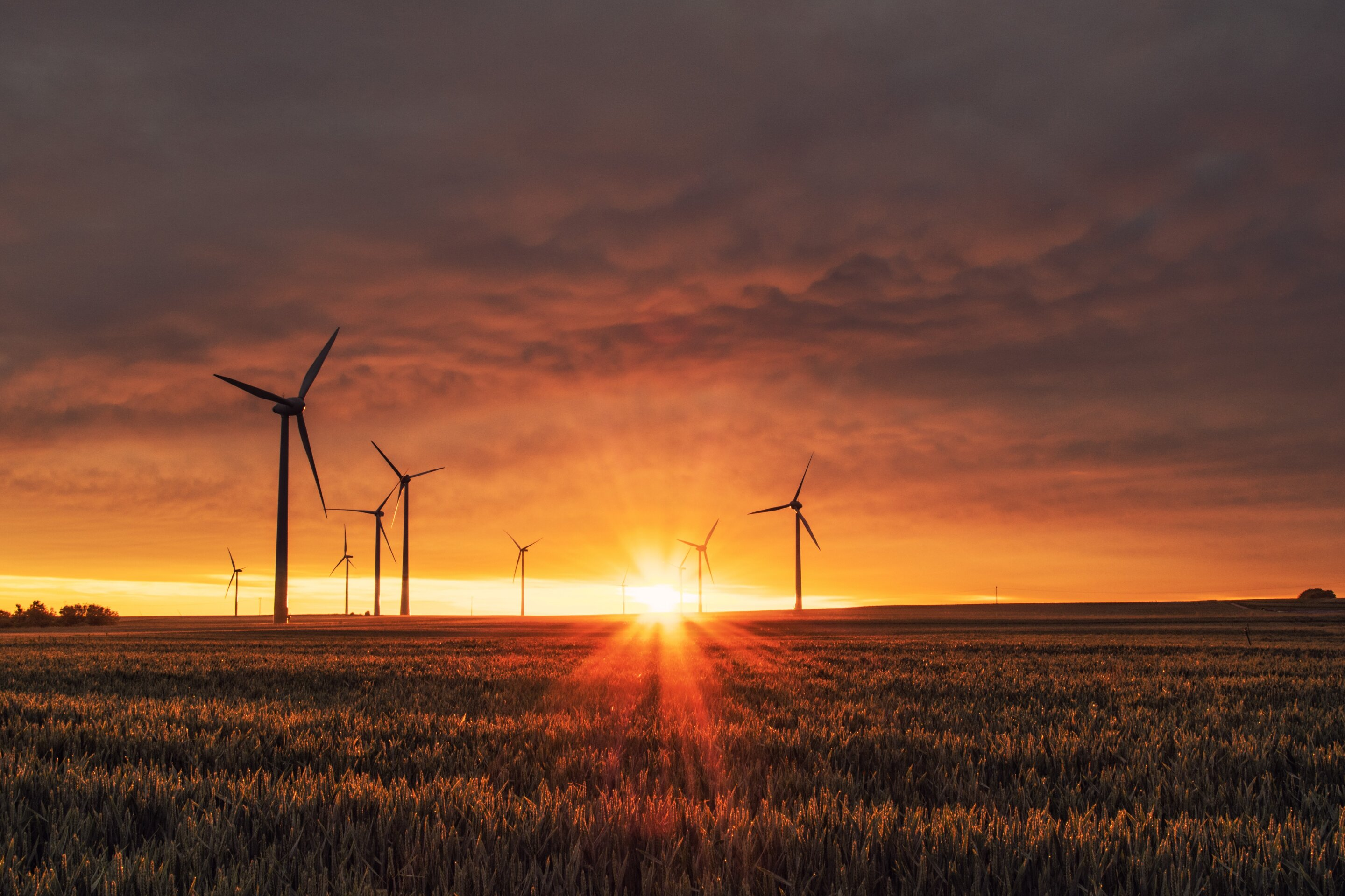 Economic cost of climate change could be six times higher than previously thought