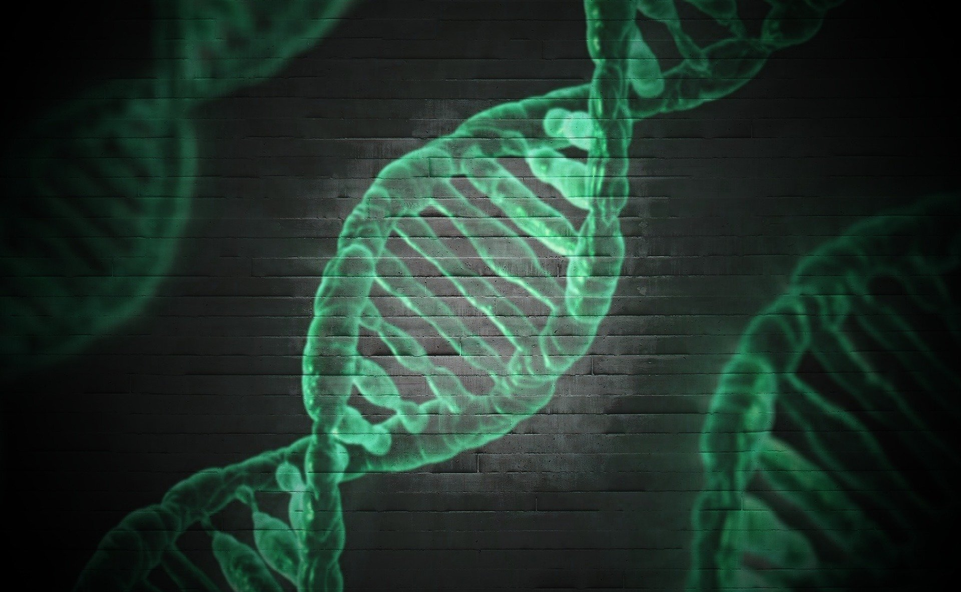 Cracking one more layer of genetic code will finally enable personalized medicine, researcher says