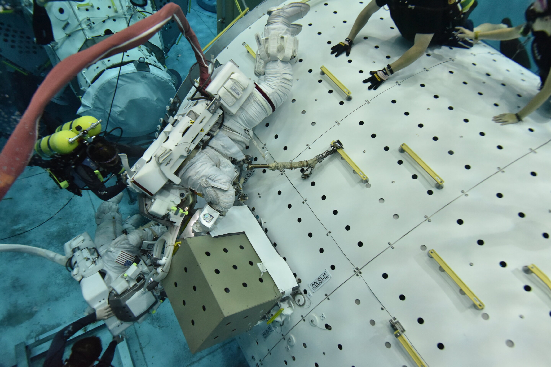 Image: Underwater astronaut training