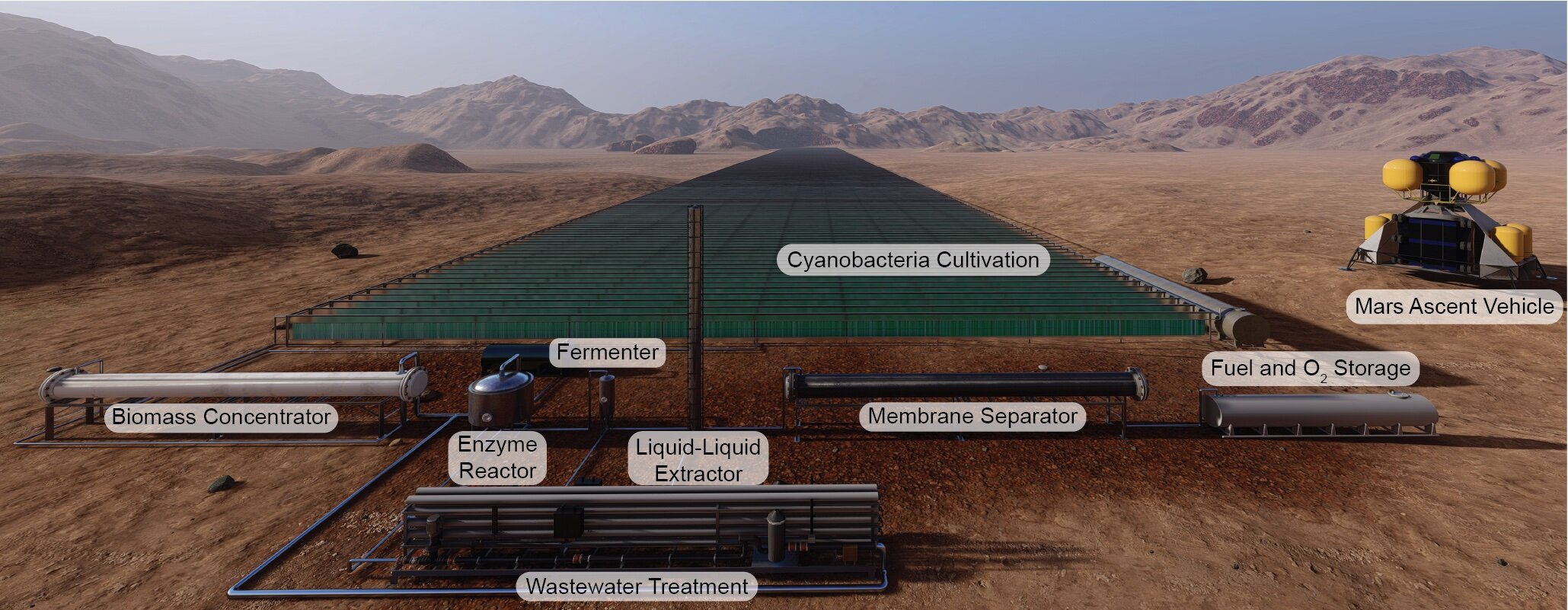 Making Martian rocket biofuel on Mars