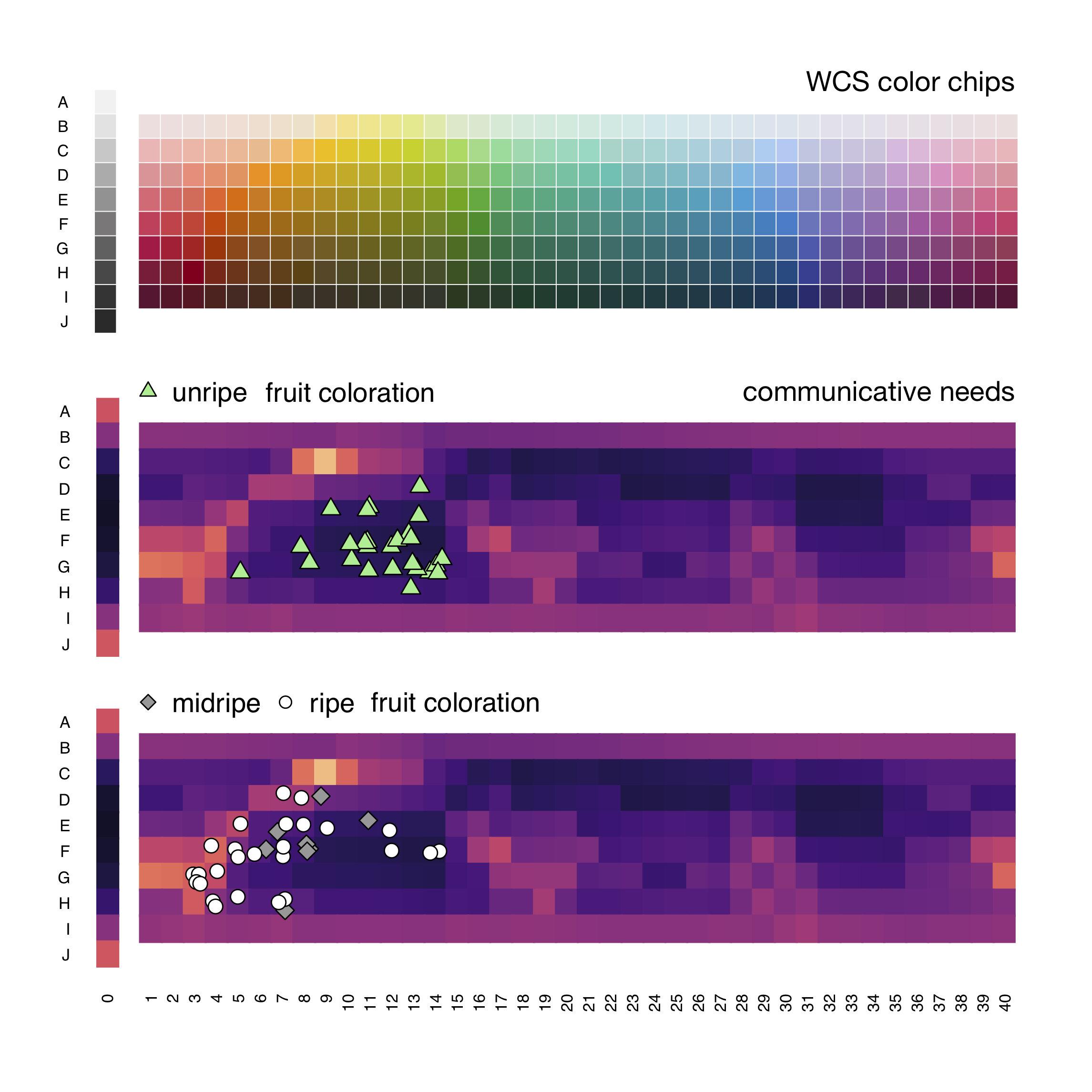 Researchers develop algorithm to map words to colors across languages