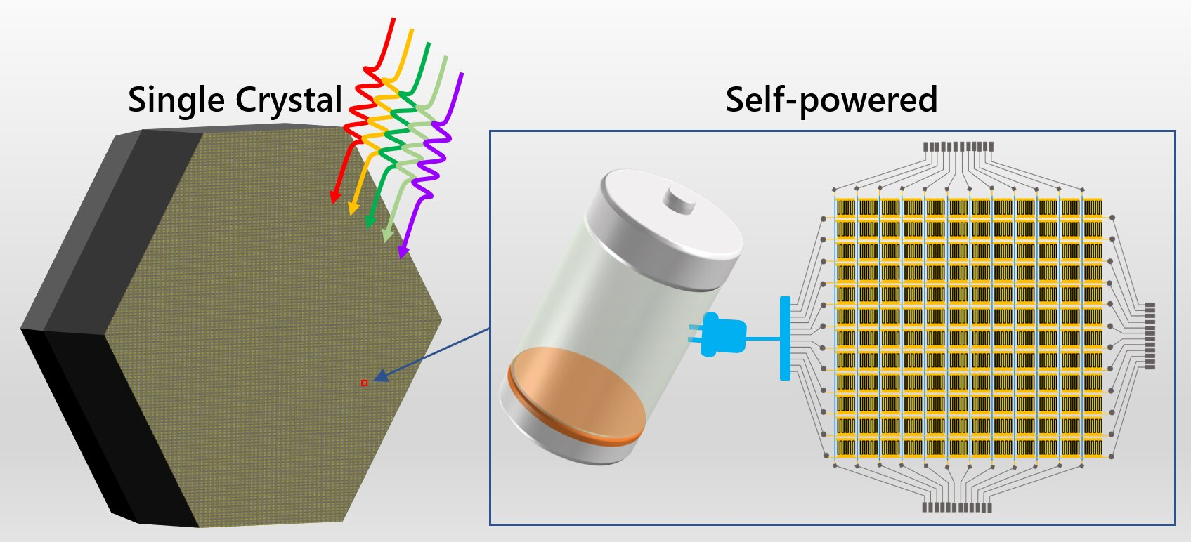 Multi-inch single-crystalline perovskite for self-powered integrated circuit photodetection reported