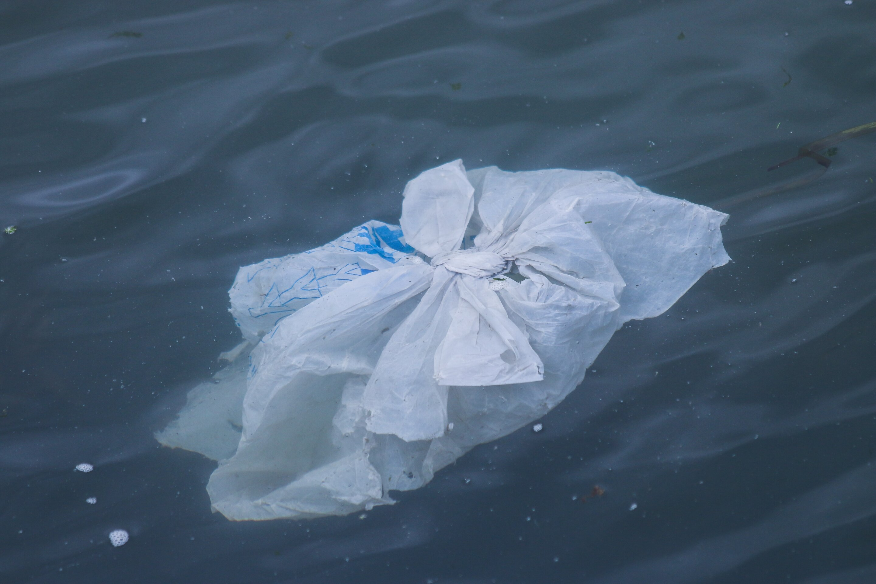 Research reveals how much plastic debris is currently floating in the Mediterranean Sea