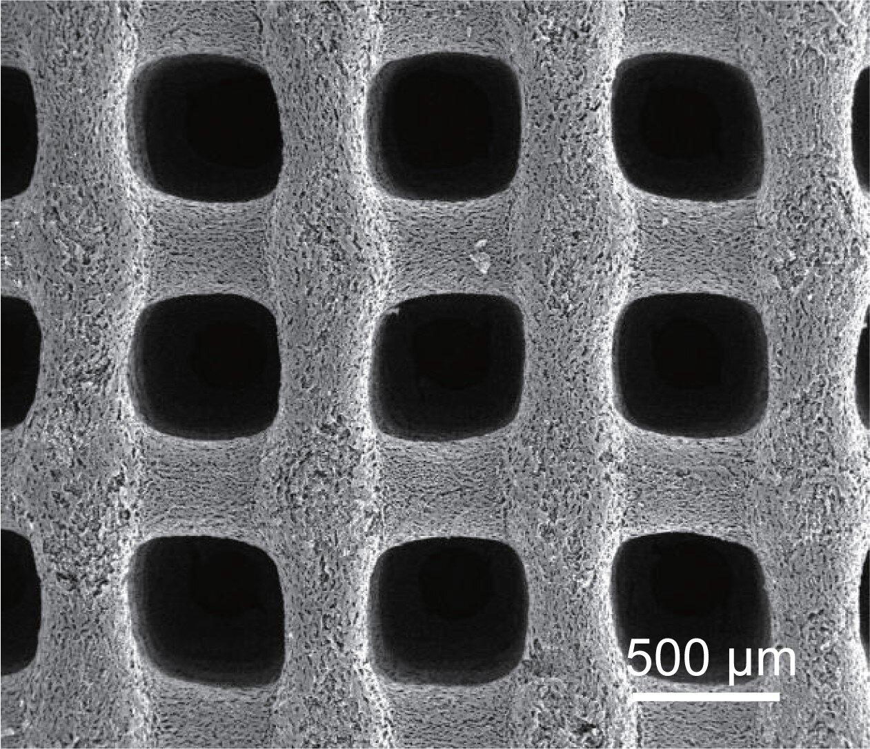 Porous, ultra-low-temperature supercapacitors could power Mars, polar missions