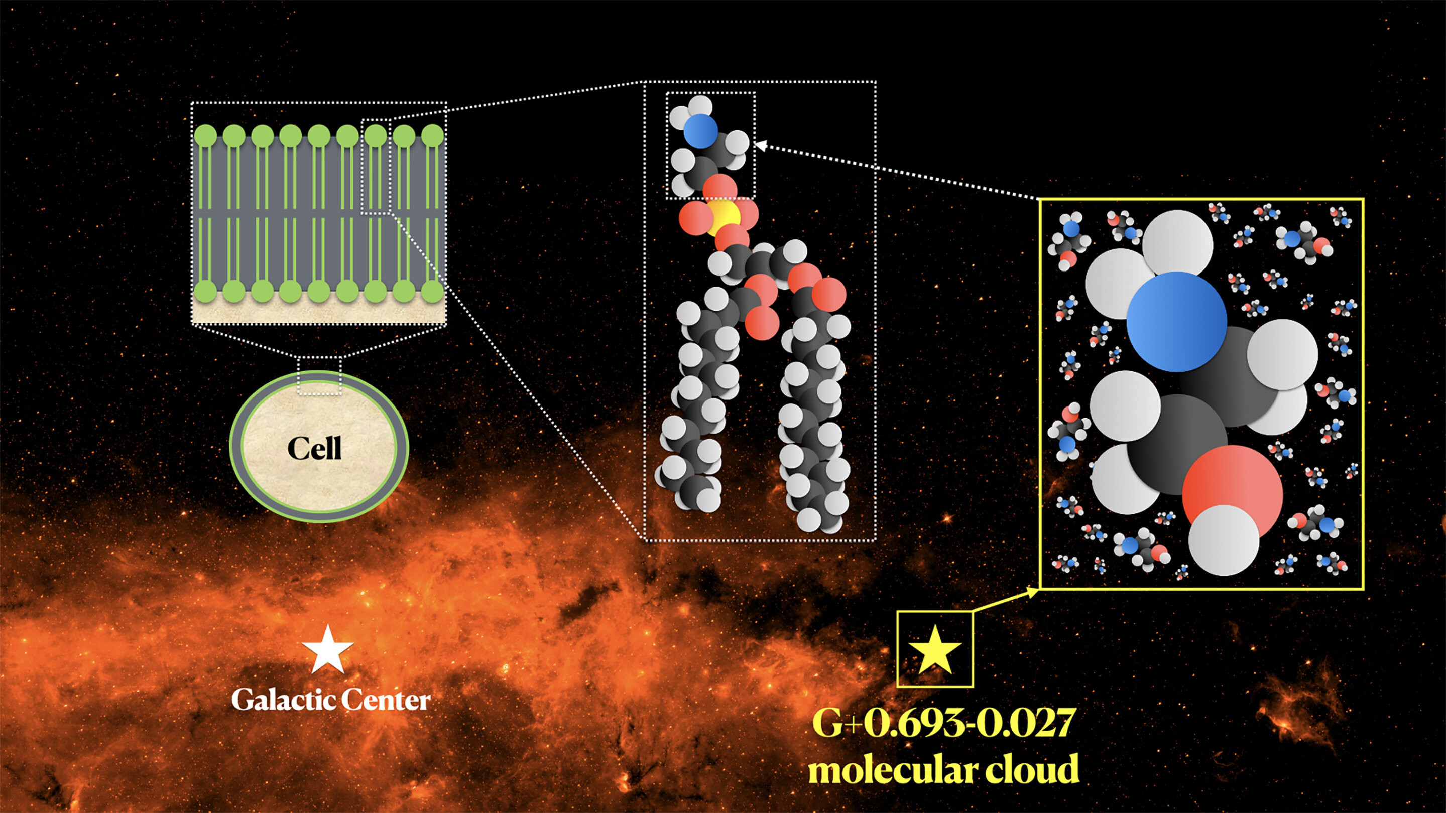 Prebiotic ethanolamine found in a molecular cloud near the center of the Milky Way